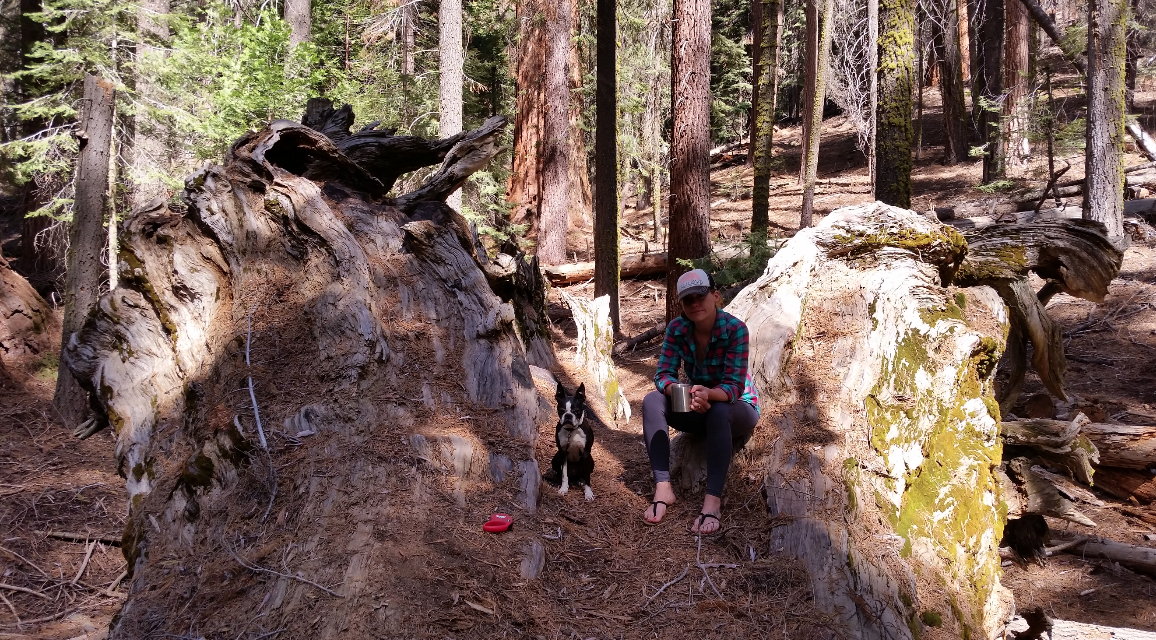 Plenty of spots to tuck in away from the crowds just off the trail.