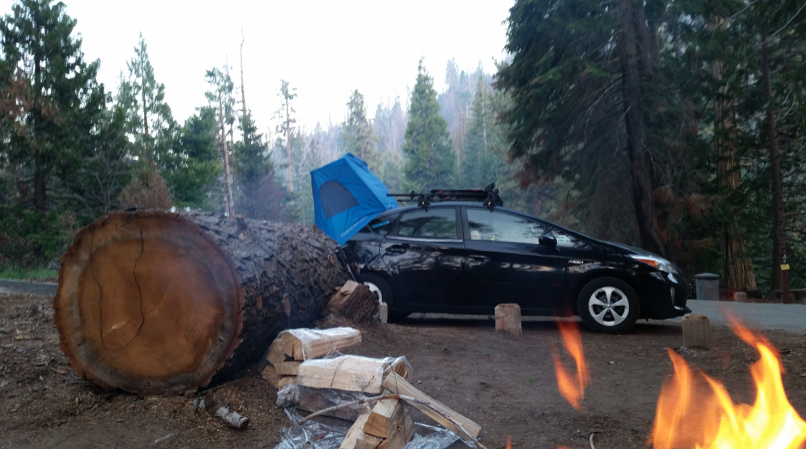 camp-redwood-meadow-sequoia-national-forest-campfire-camp-prius