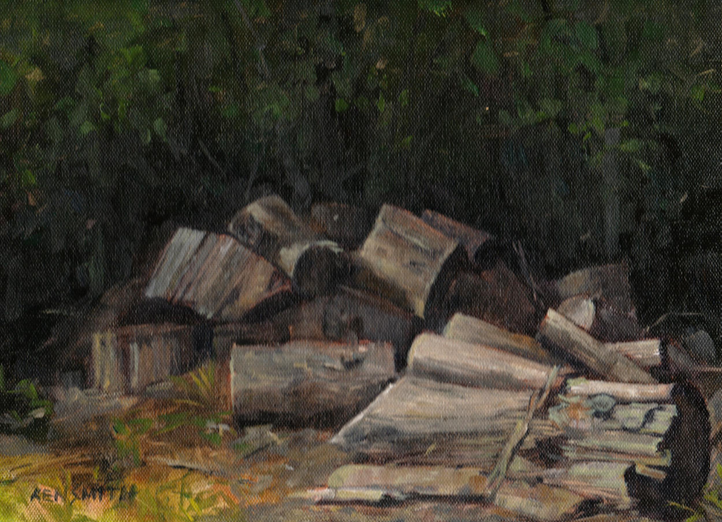 Blue Ridge wood pile