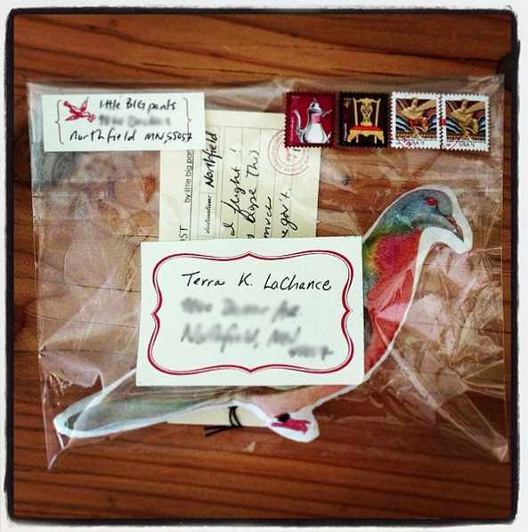 stuffed passenger pigeon post in clear envelope