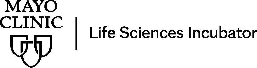 LSI Logo.png