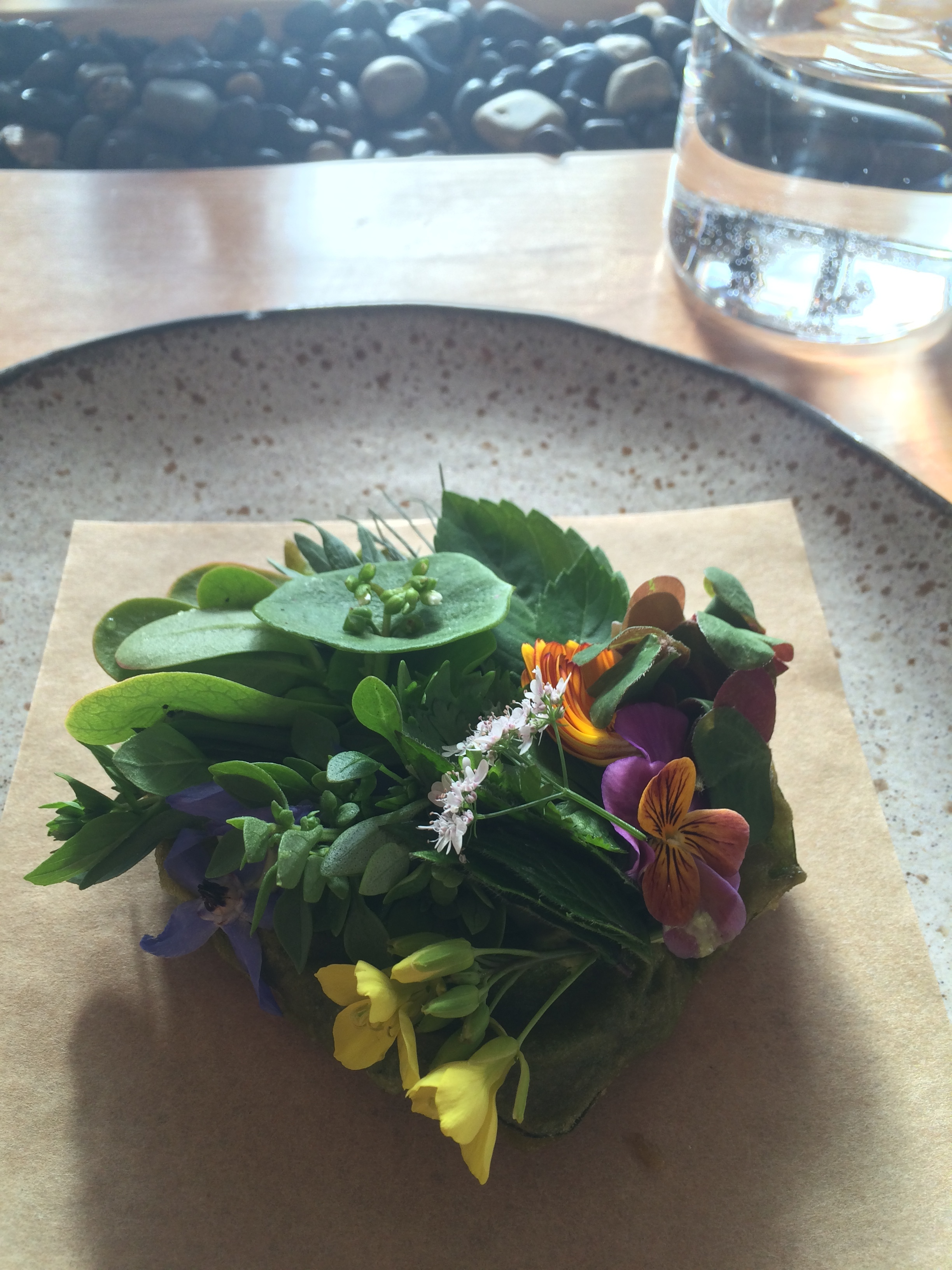 Wild herbs and crispy chicory leaves