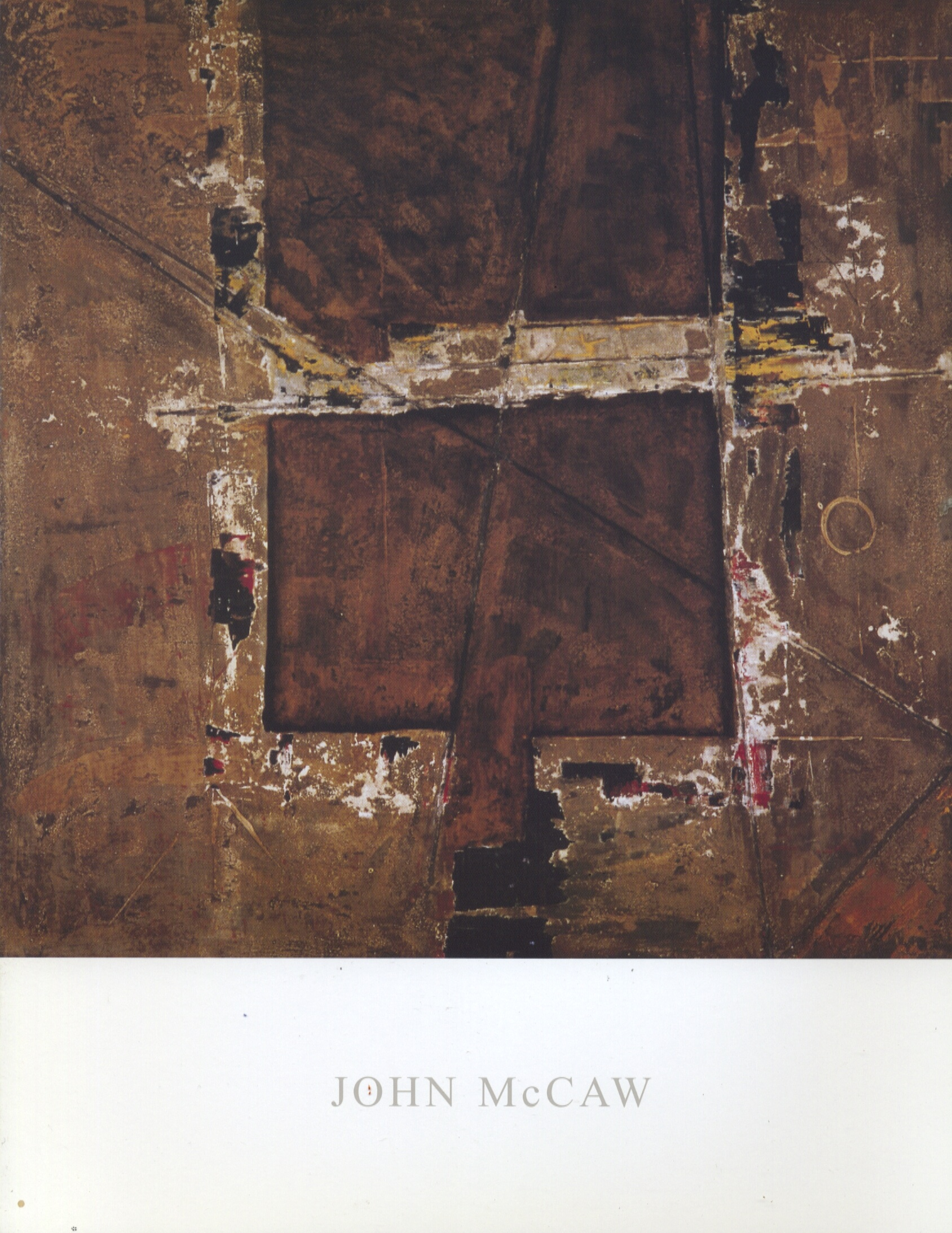 Scan-JohnMcCaw cat1.jpg