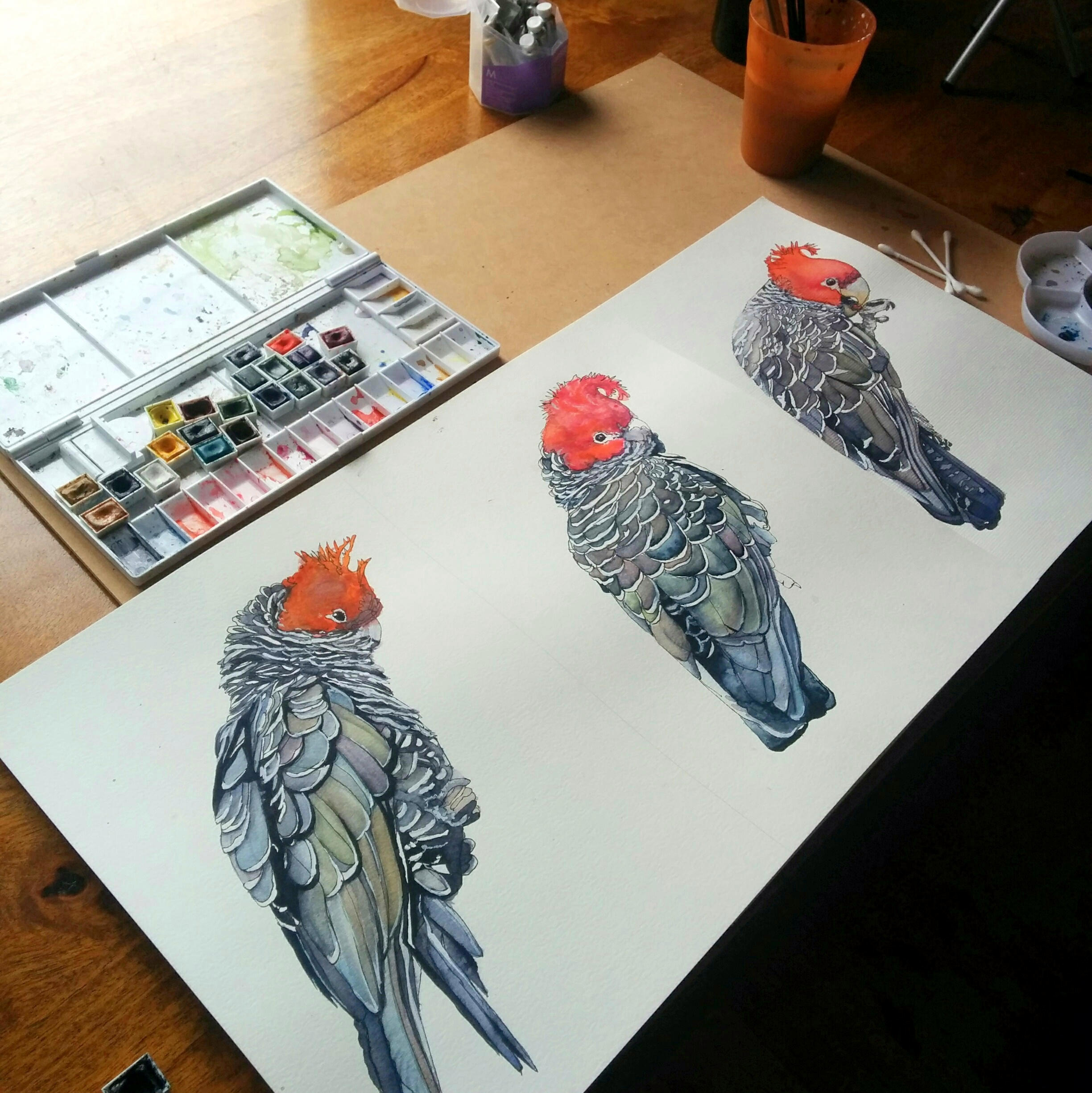 Join me in the studio  here  for the first chance to take home original artworks, insights into my painting & inspirations, and to help me decide what to work on next.