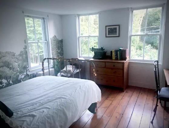 Forest Wallpaper Guest Room.jpg