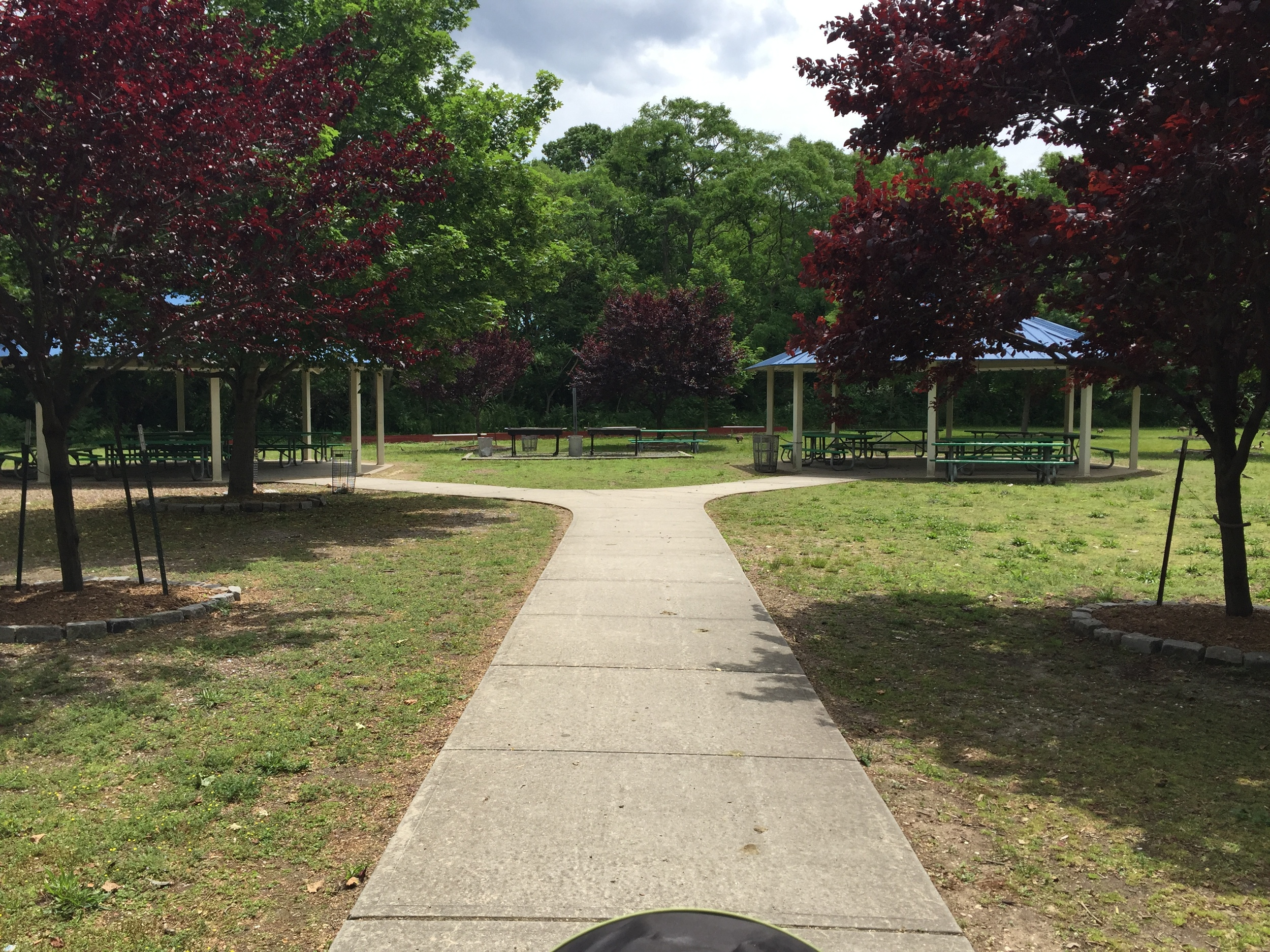 Trail at Forest City Park