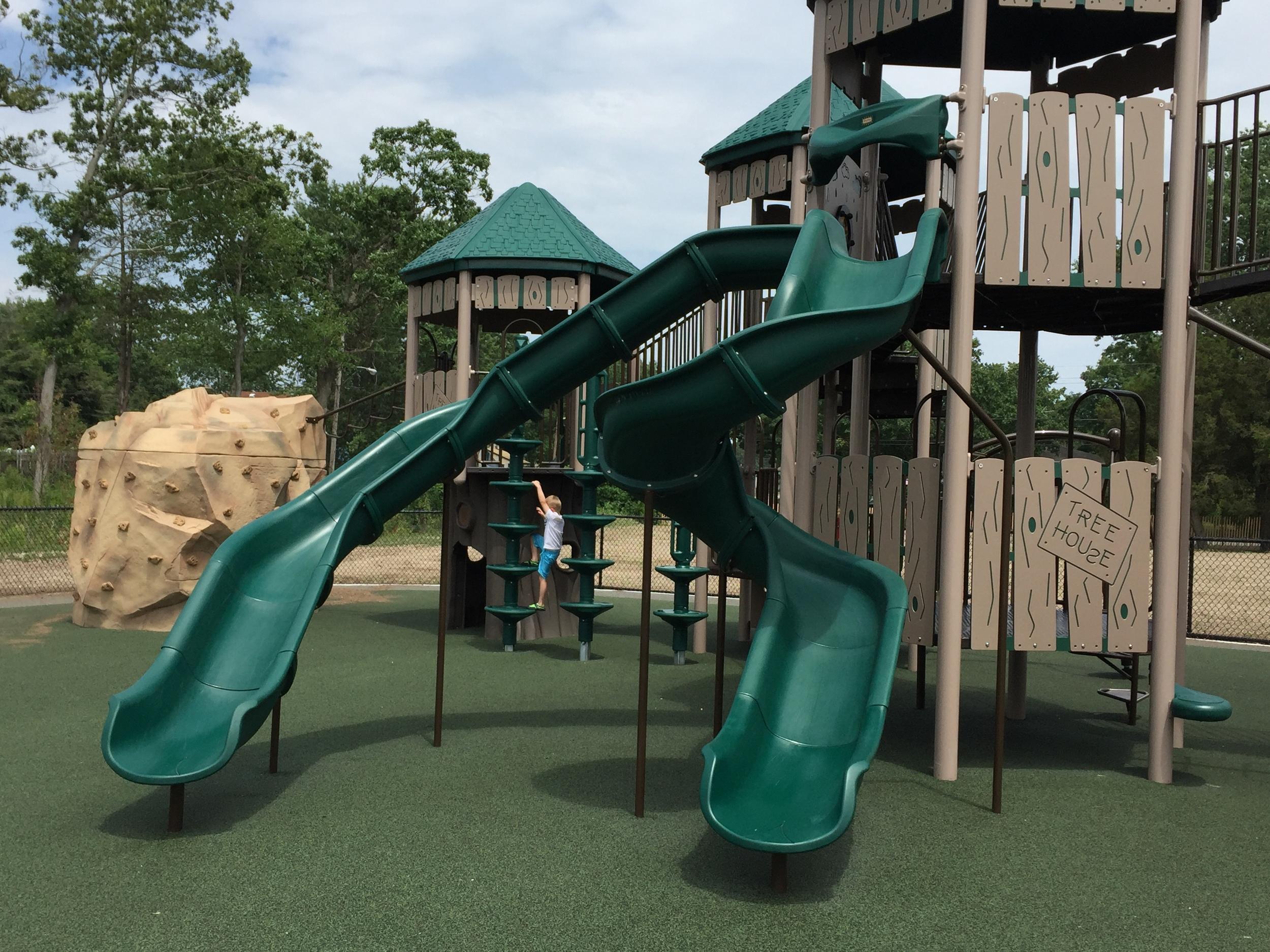 Slides at Geiger Memorial Park