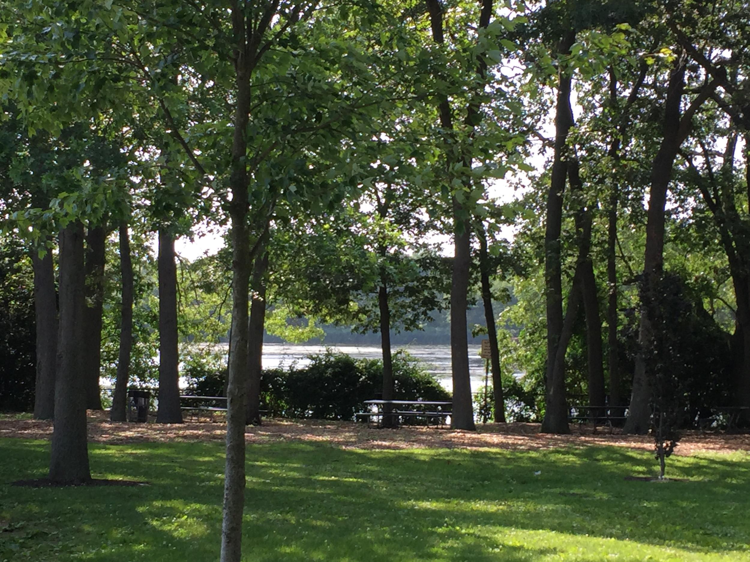 Playground view at Brady Park