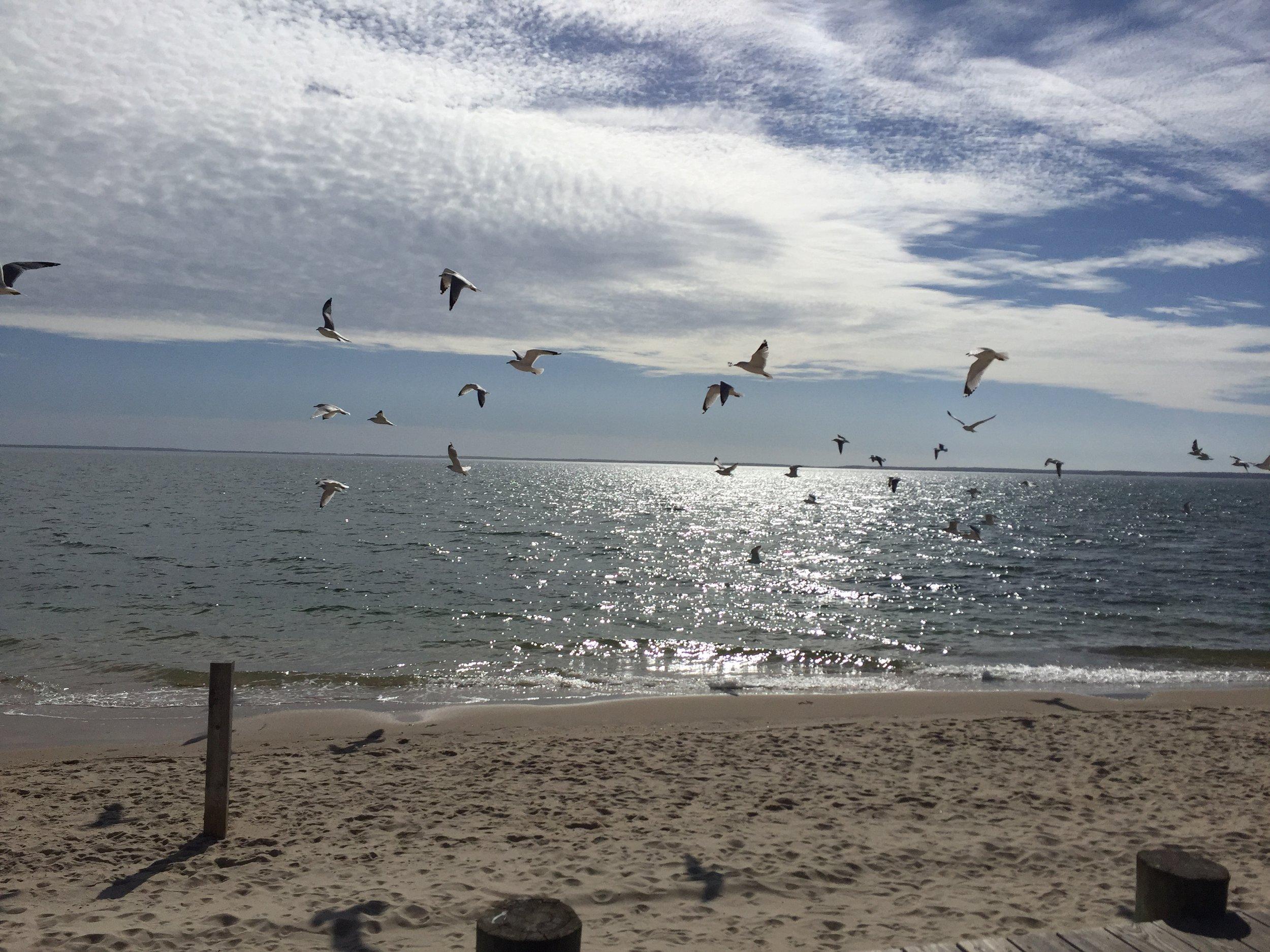 Veterans Beach
