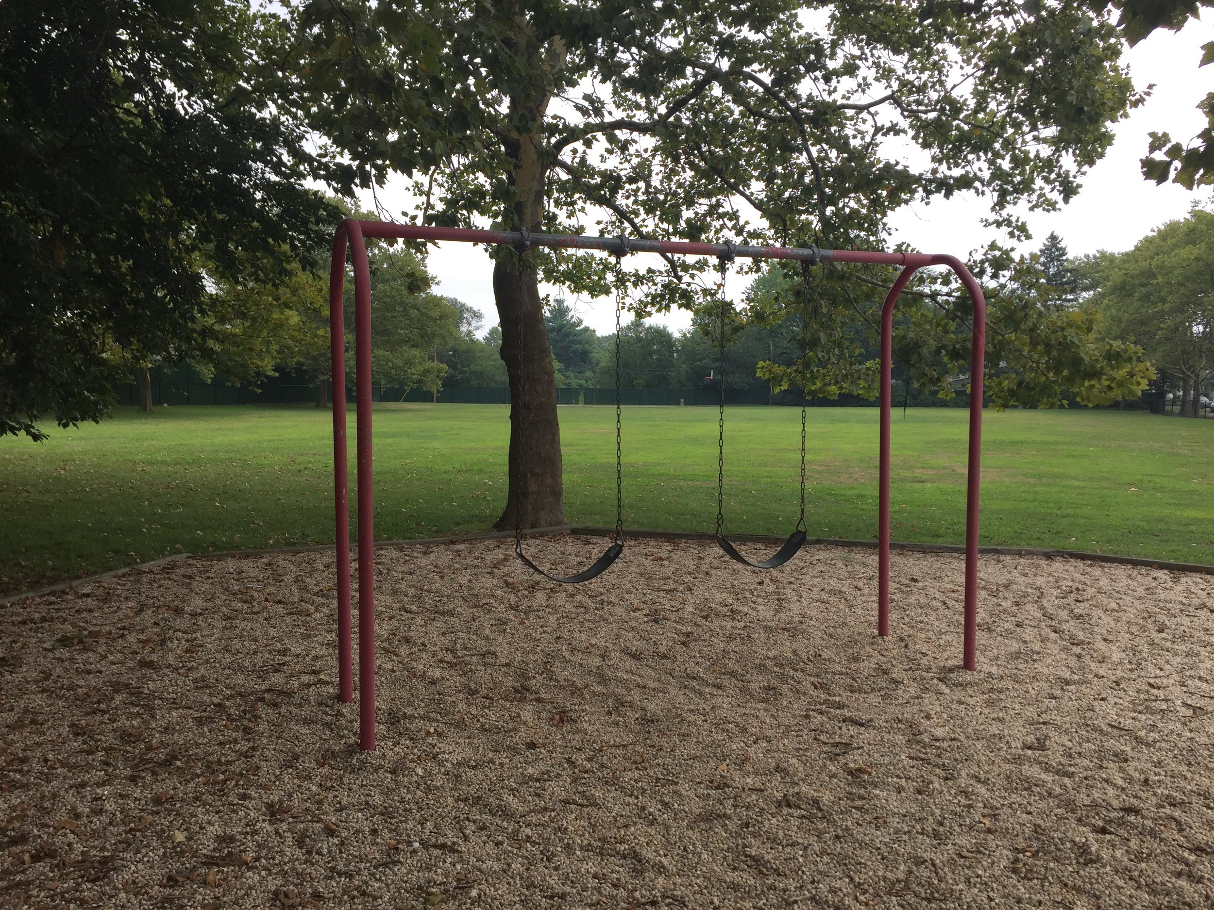 Cornell Ave Playground Swings