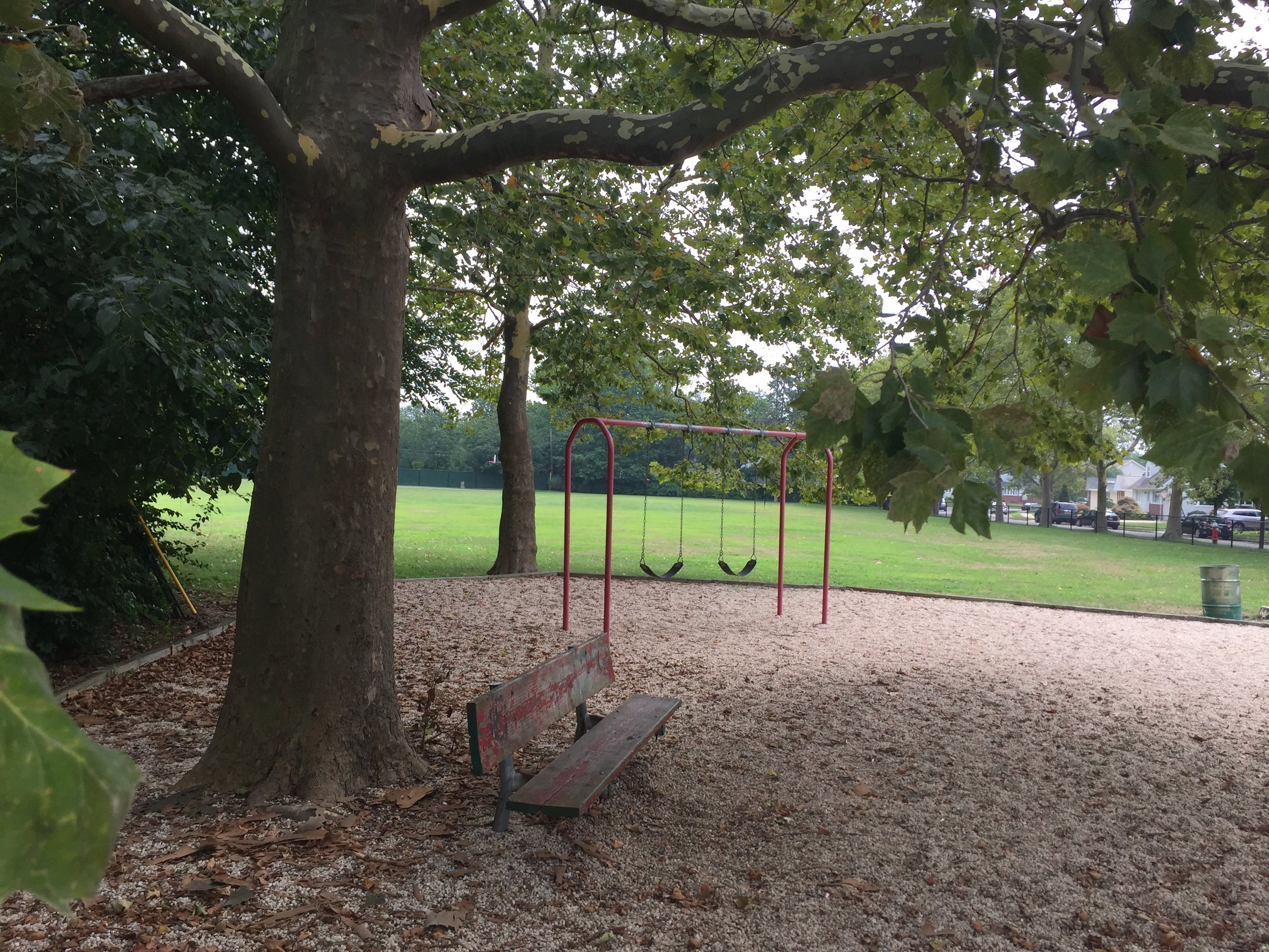 Cornell Ave Playground