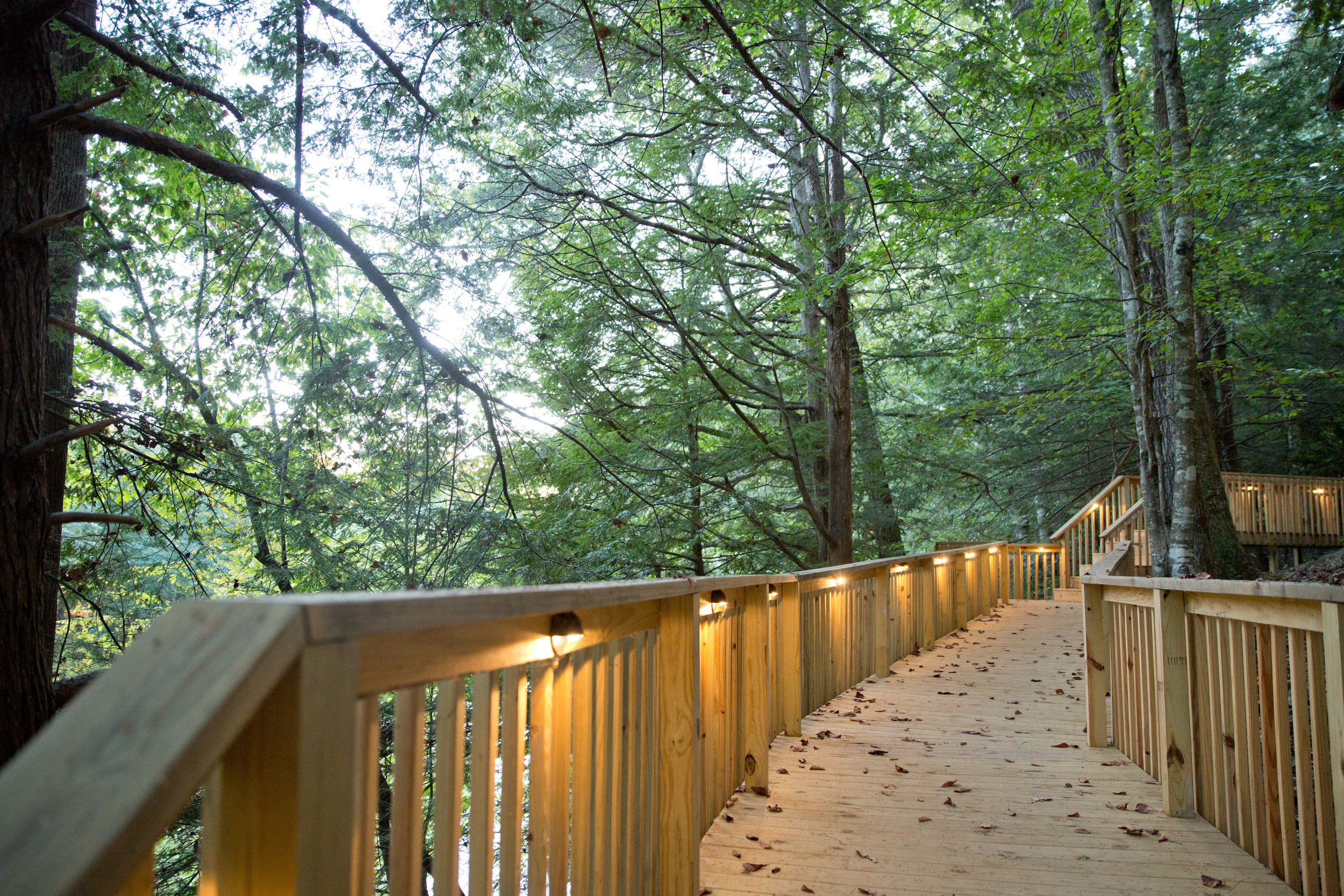 Pathway to the Cabins, Love!