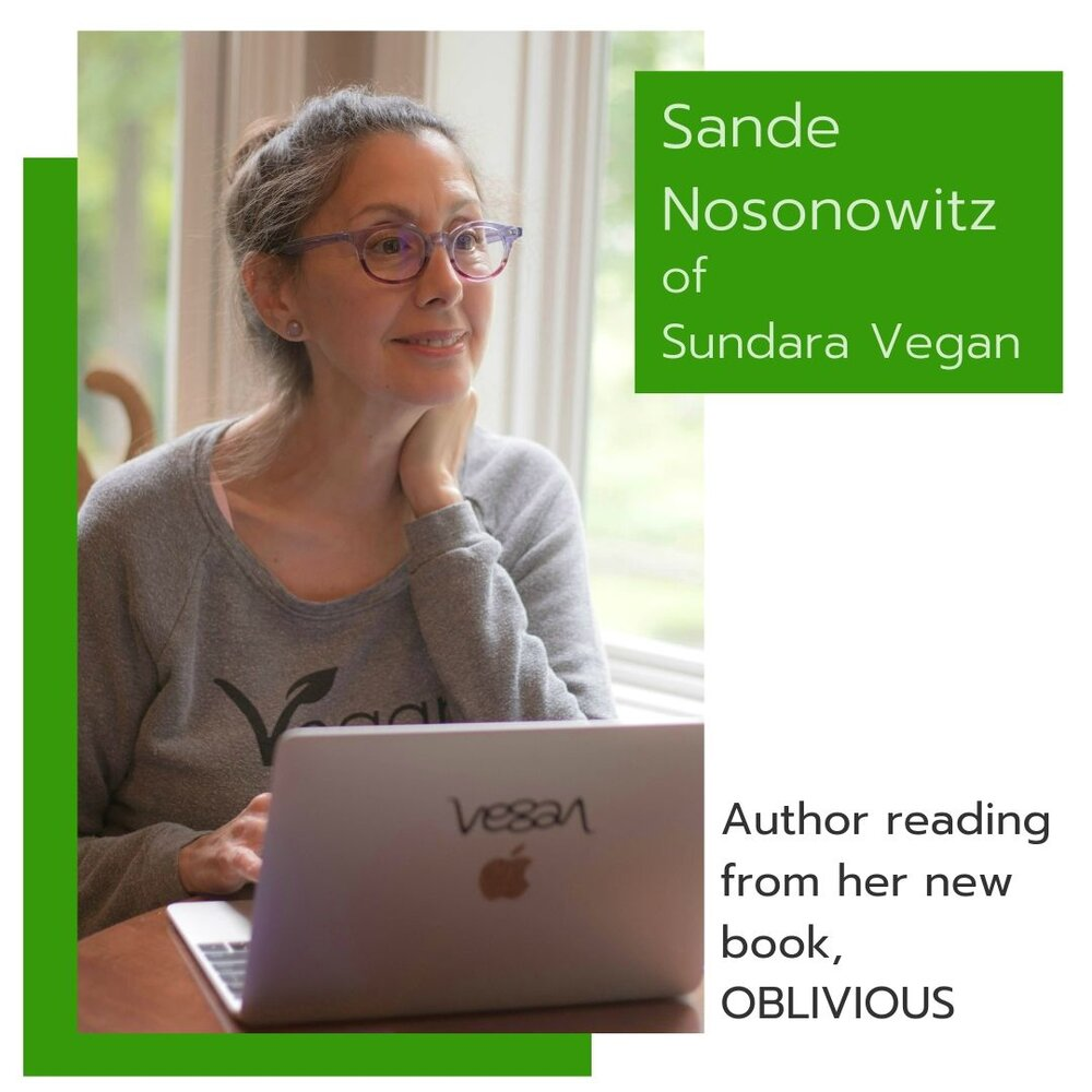 Sande Nosonowitz for Speaker Page.jpg