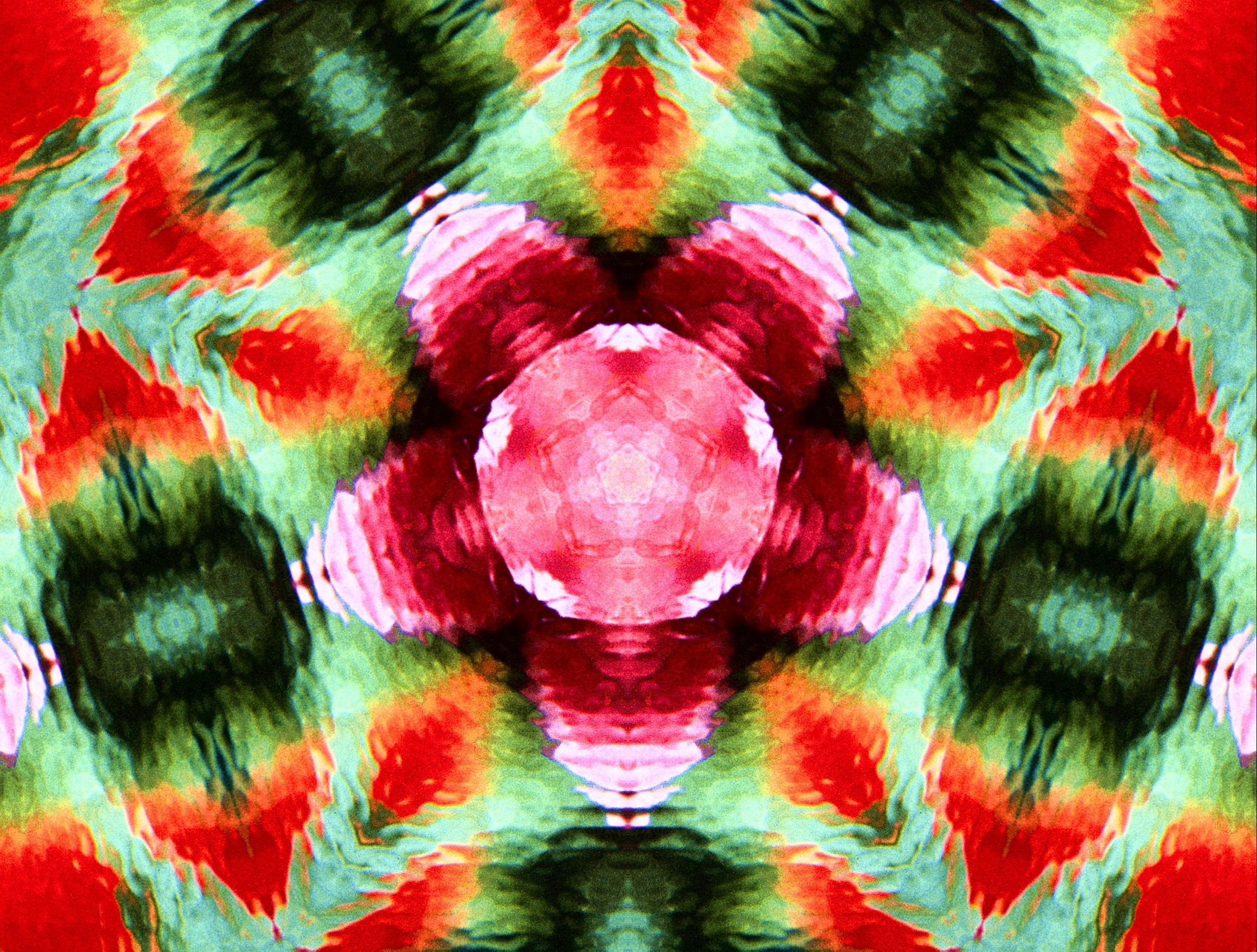 Floral K.scope 1.jpg