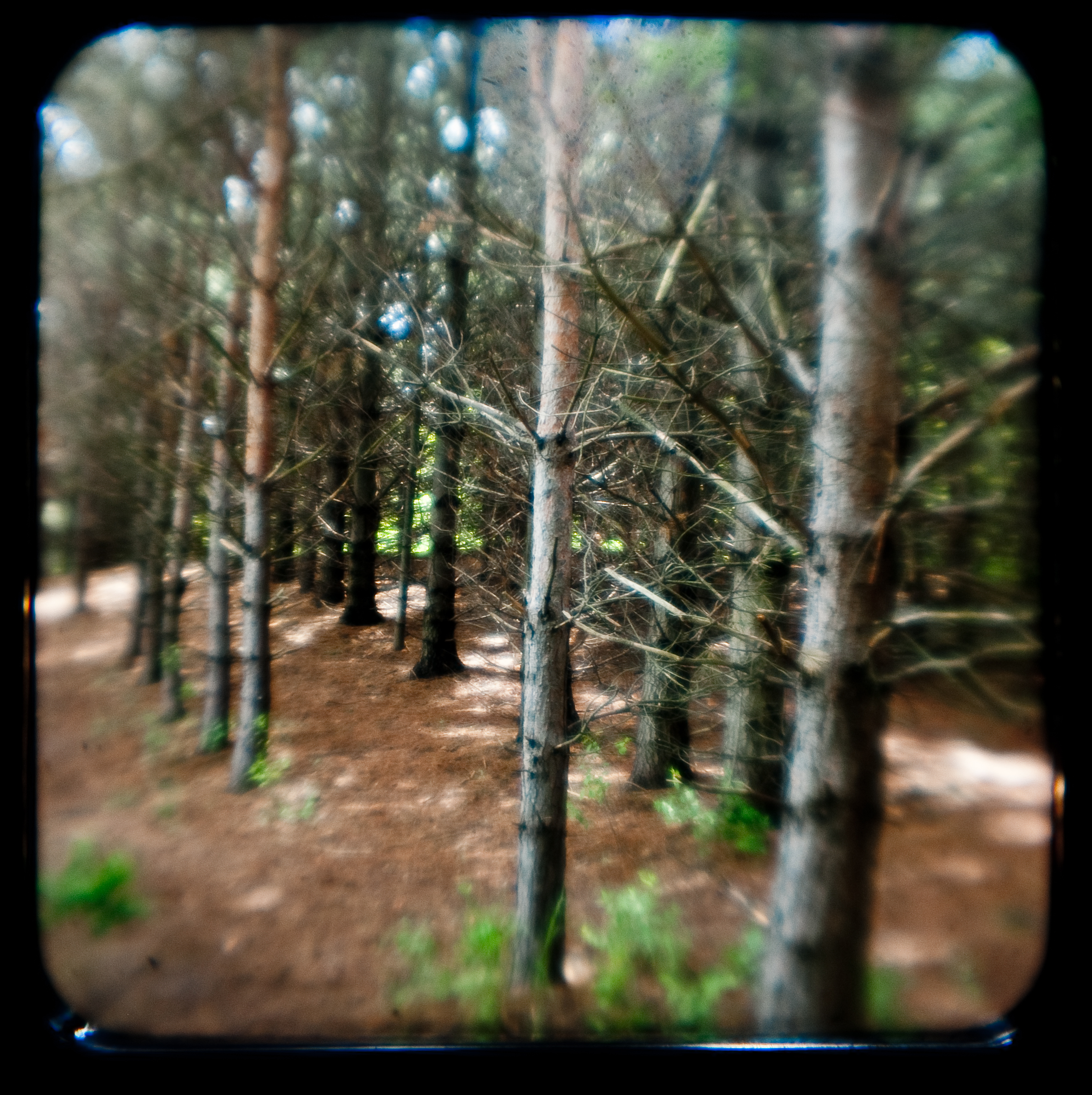 Battle Creek, TTV-1.JPG