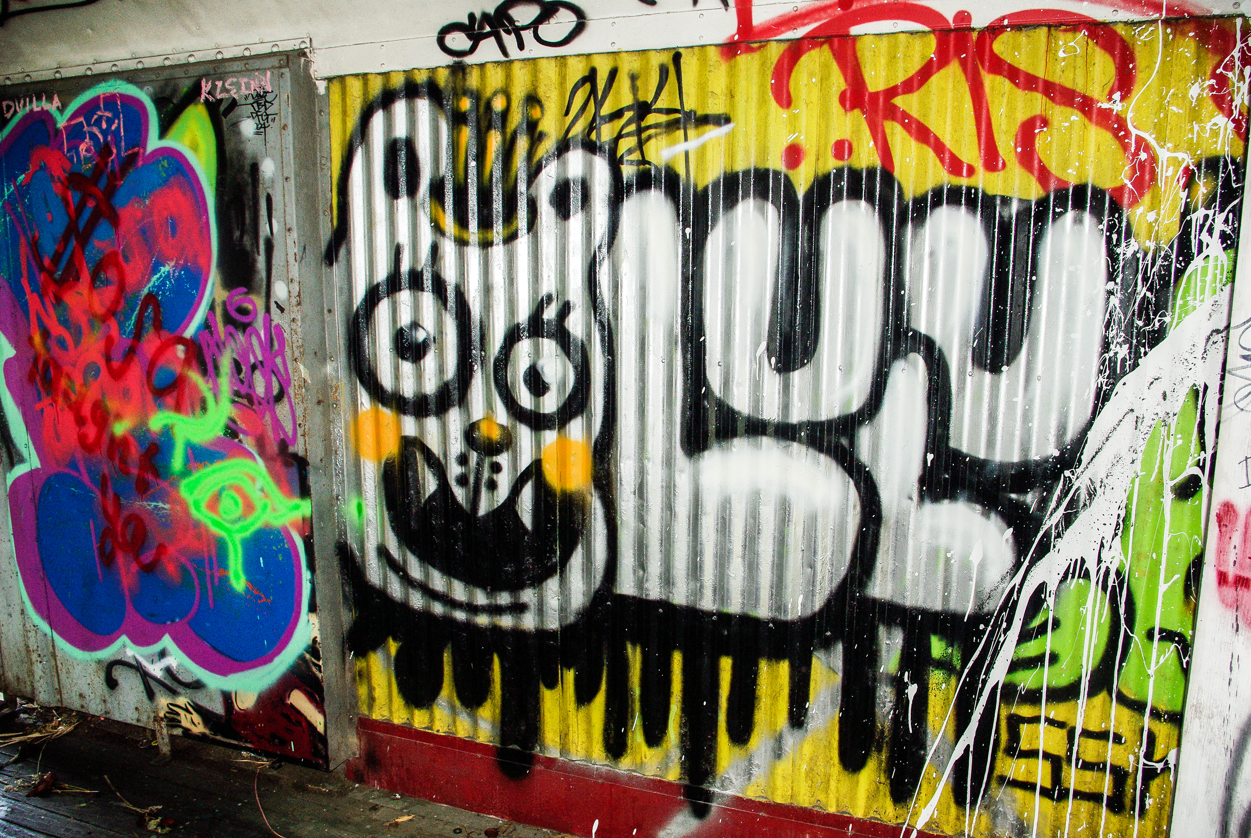 Abandoned Train Car Graffiti #5.jpg