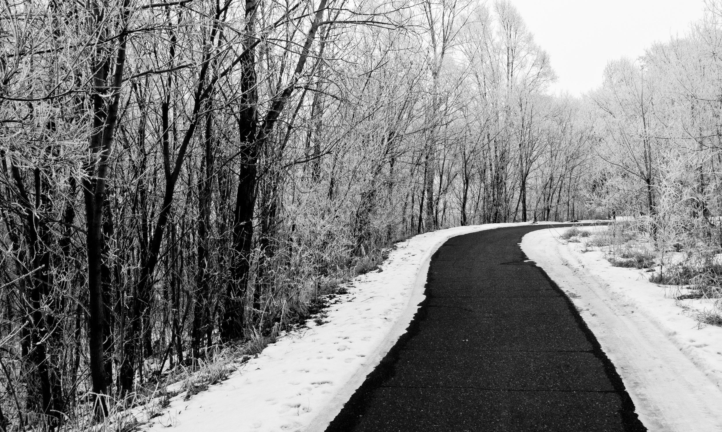 Hoarfrost Covered Trail.jpg