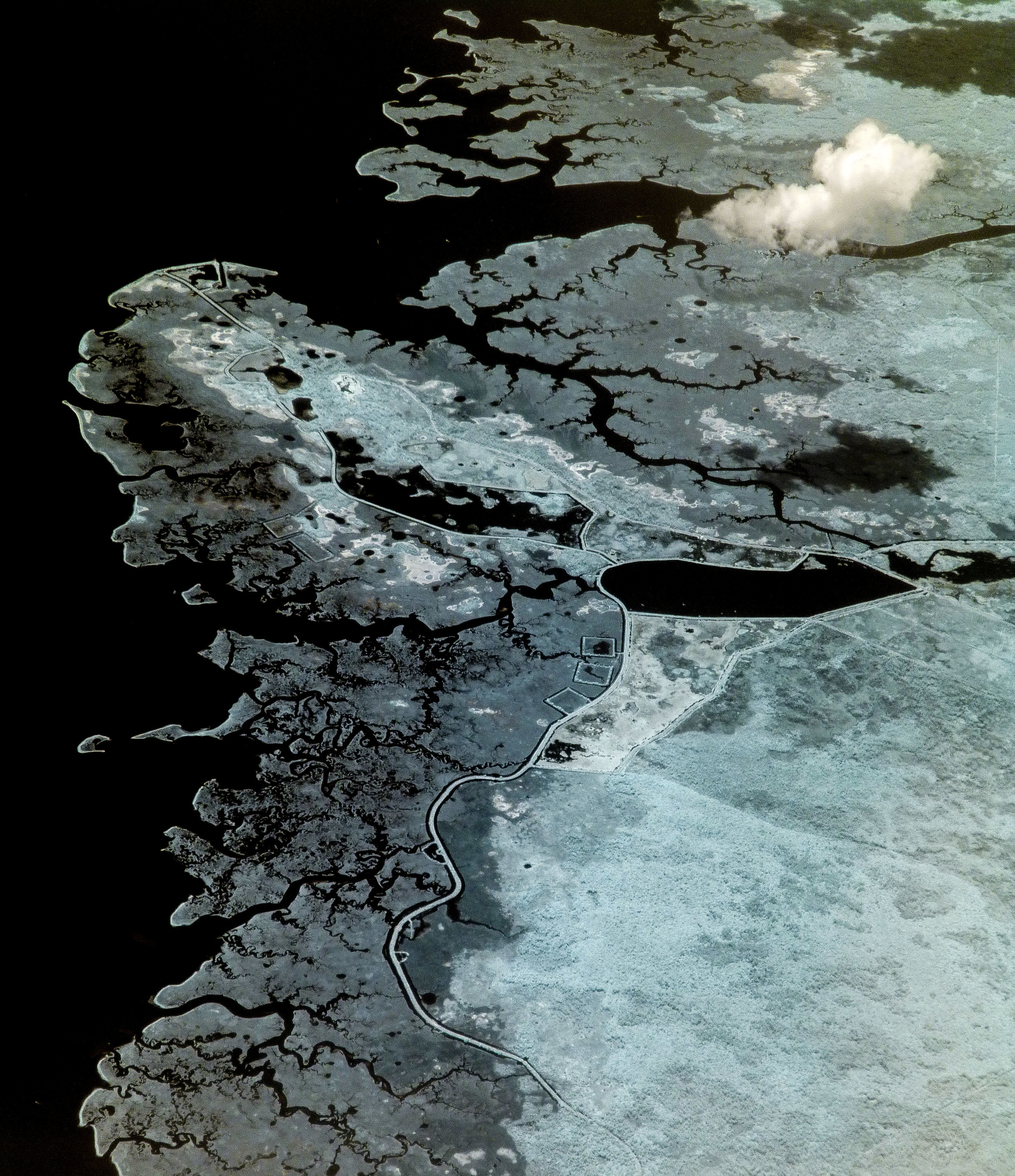 Aerial View, Infrared 2 (1 of 1).jpg
