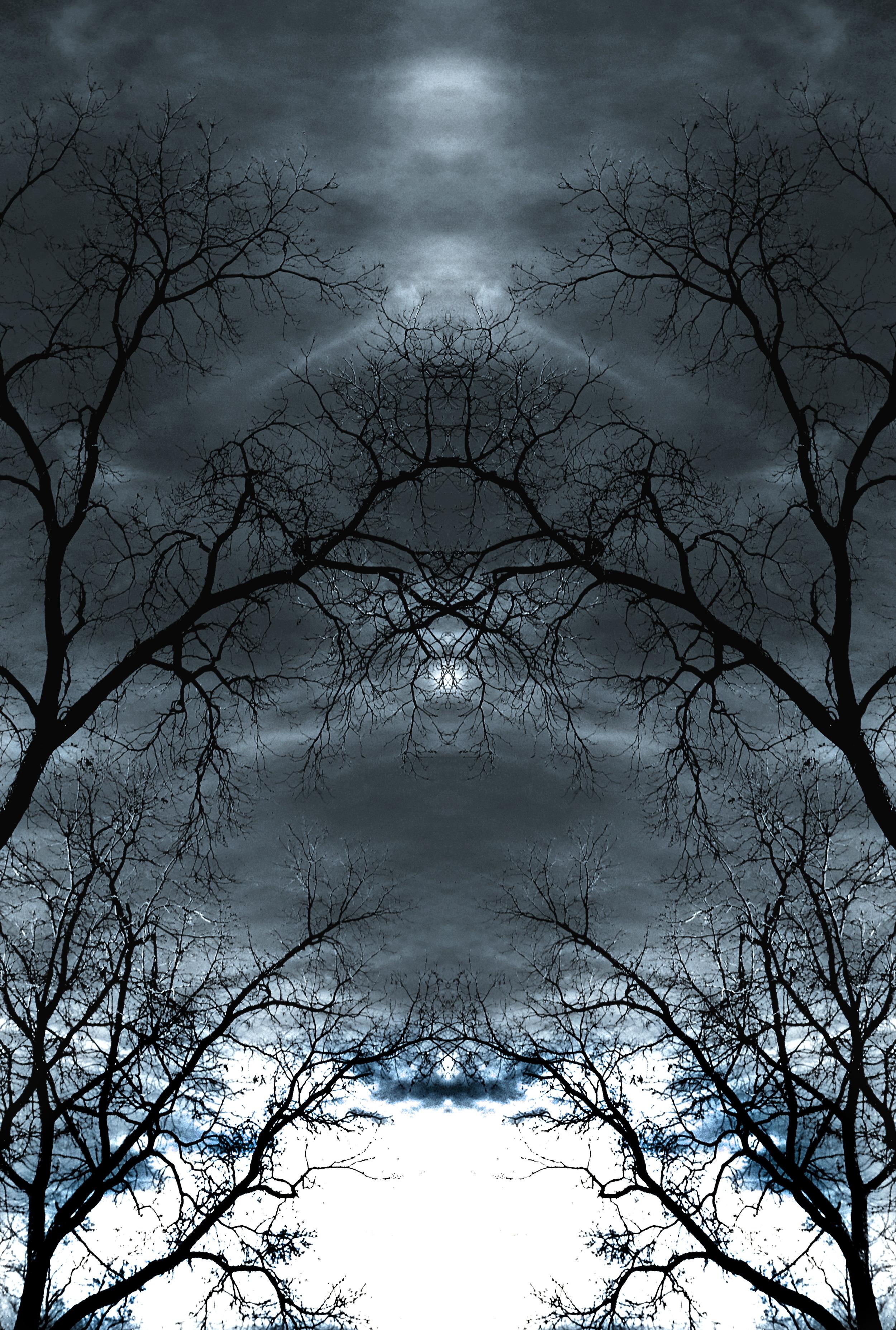 Ominous Path.jpg