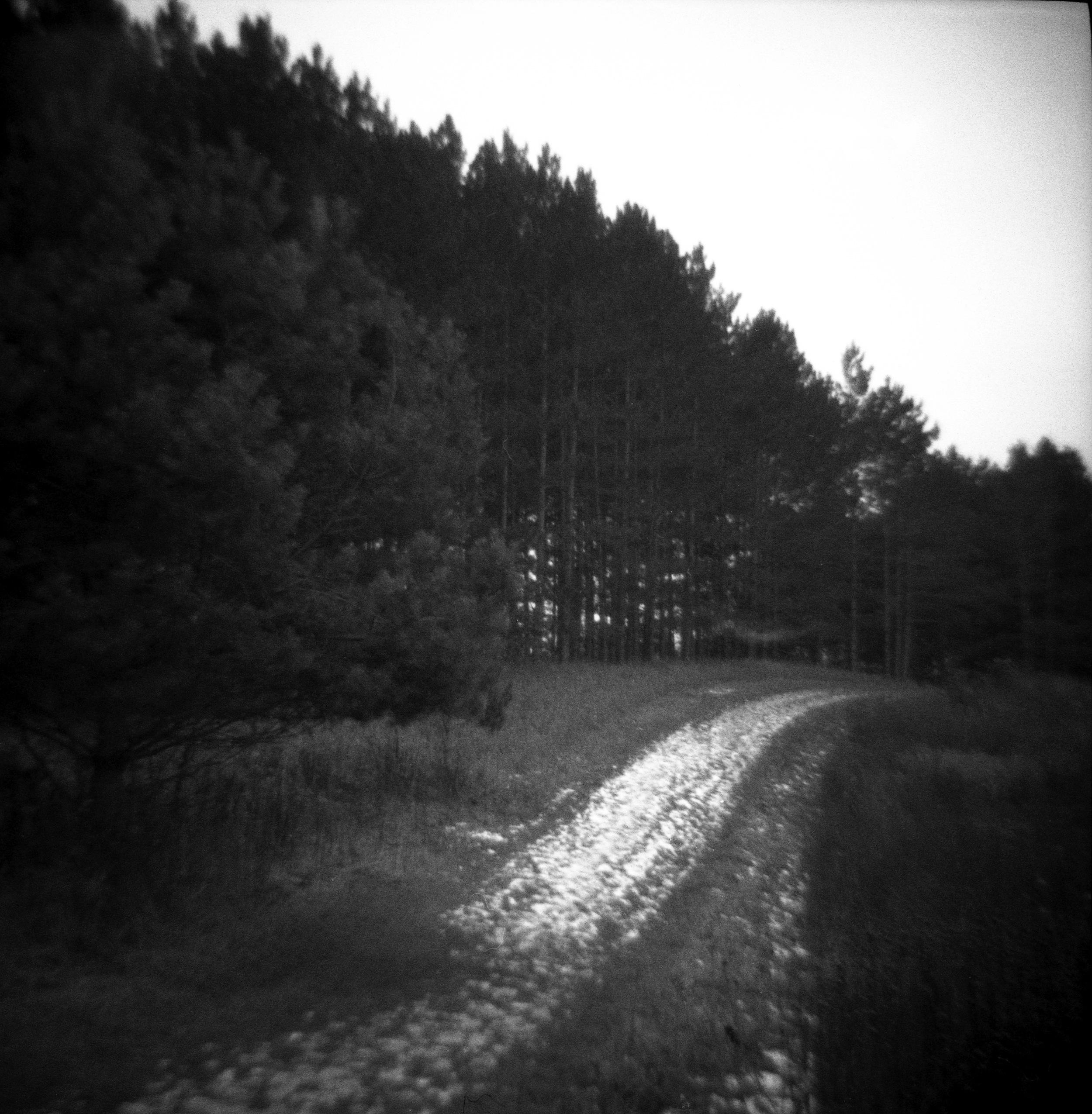 The Trail, Battle Creek.jpg