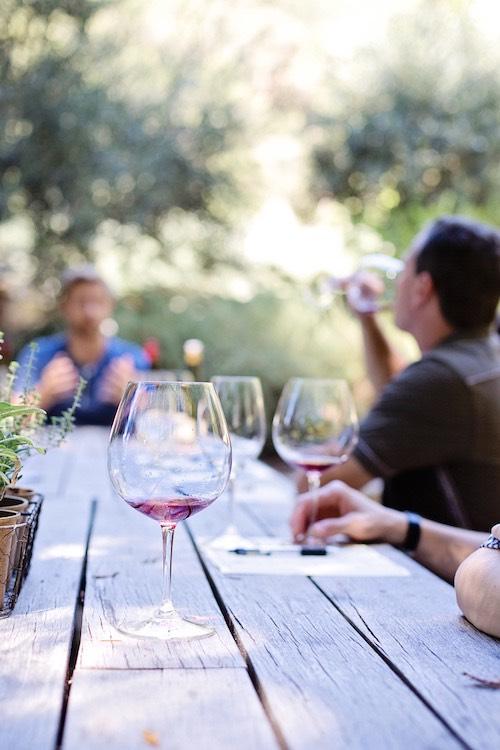 wine-tasting-1952074.jpg