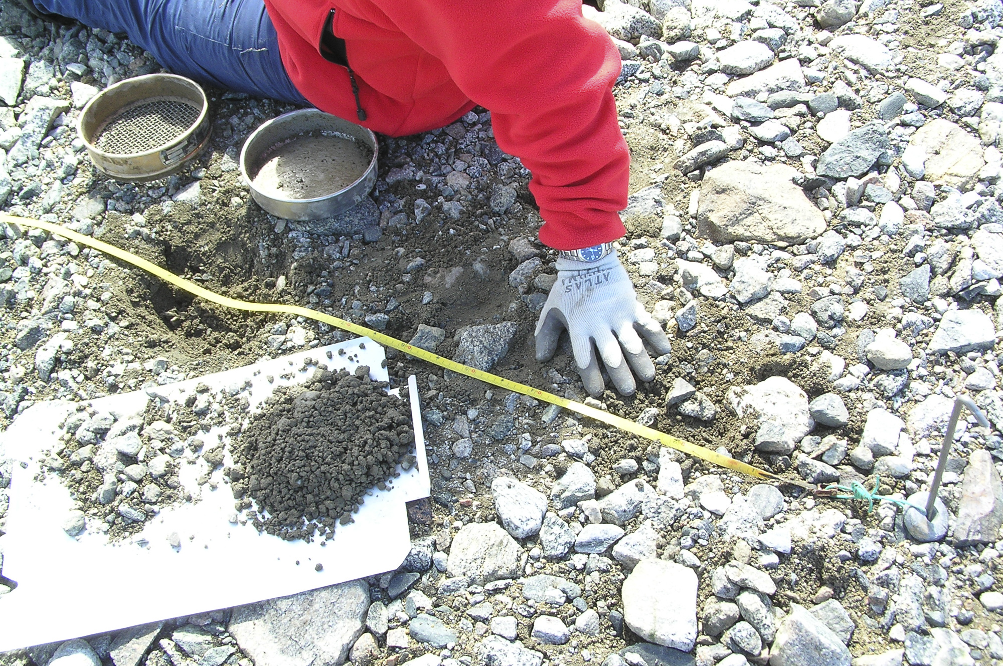 Antarctic soil biodiversity sampling.