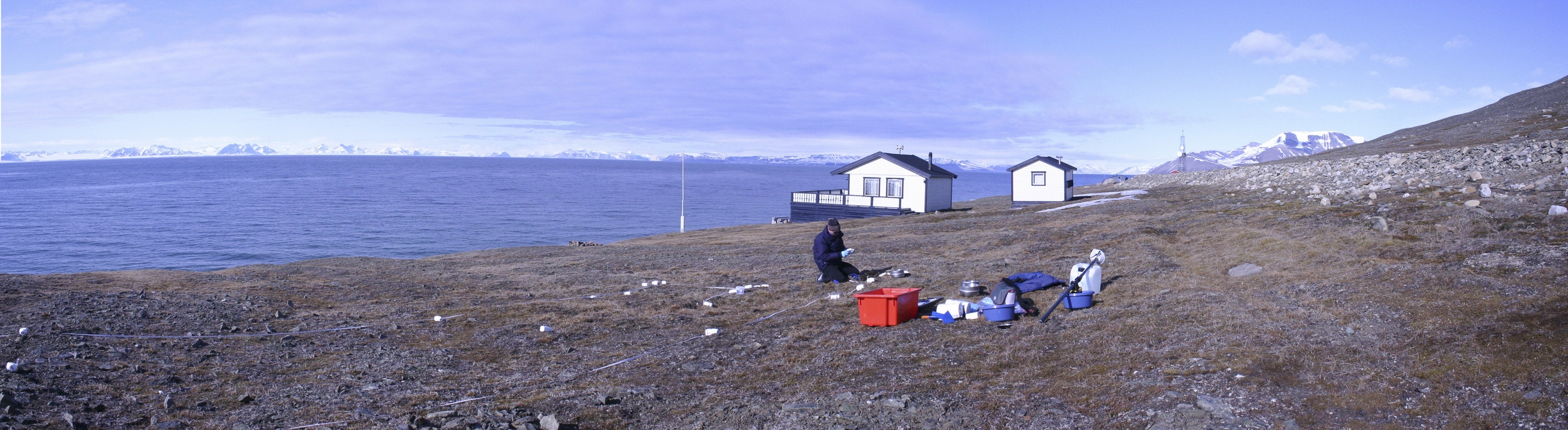 Antarctic soil biodiversity sampling site on  Browning Peninsula.