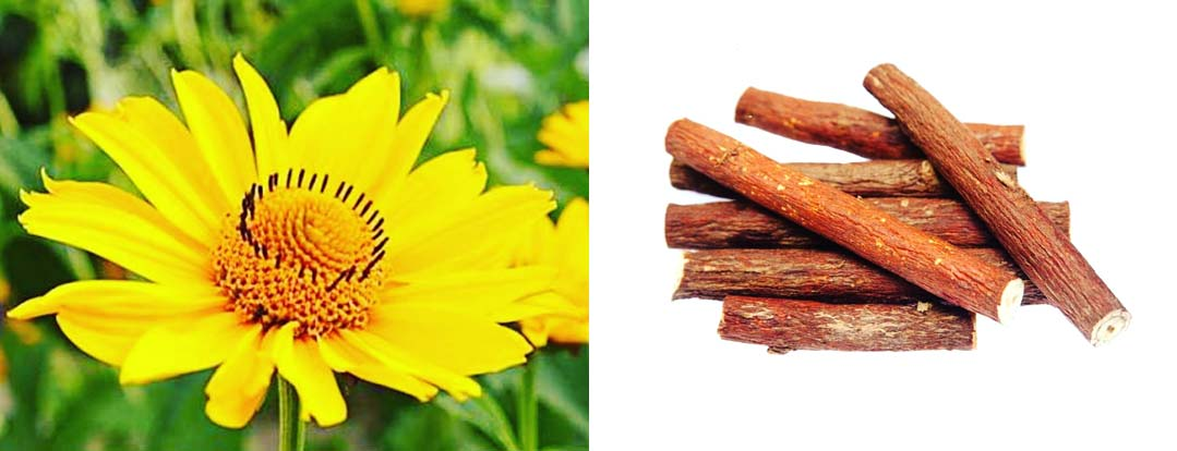 Arnica & Licorice Root