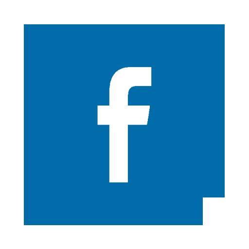 facebook fasesa.png