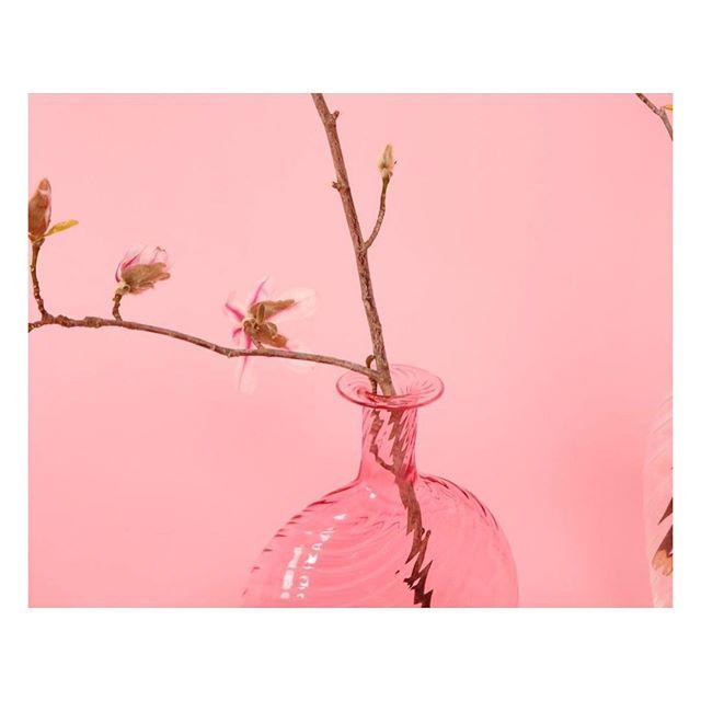 Mood #pachamamalondon #pink via @mansurgavriel