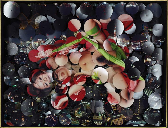 Nippon-Konchuki I  2013  40 x 50 x 6 cm