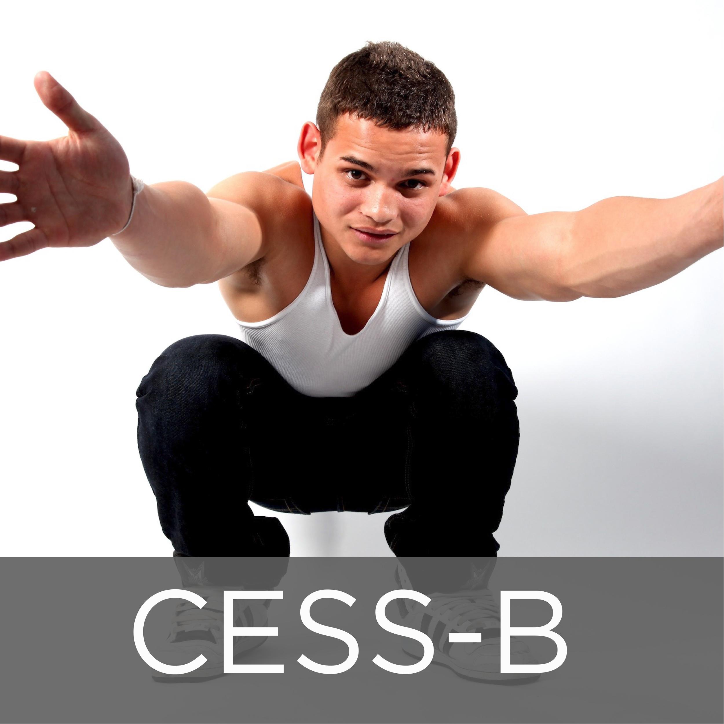 Cess-B