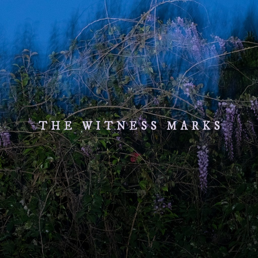 the-witness-marks-1024x1024.jpg