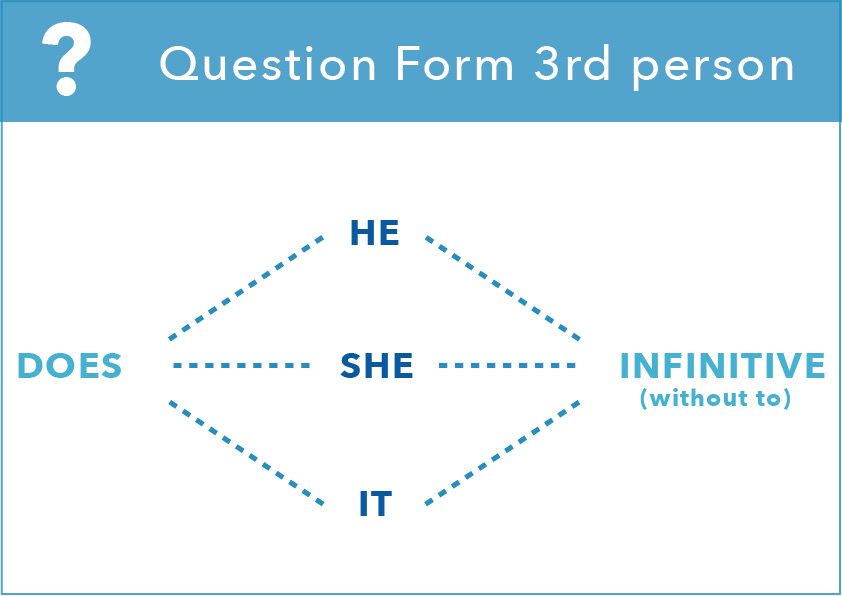 present simple form question 3rd