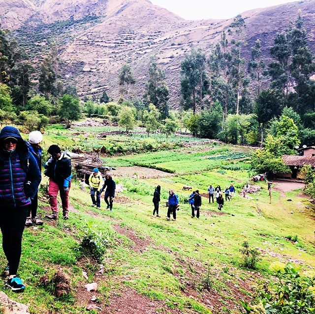 Walking, walking on my beautiful farm land #sacredvalleyperu #peru #peruanas #cusco #machupicchu #cusco #igersperu #igerscusco #foto #fotografia #adventure #adventuretime