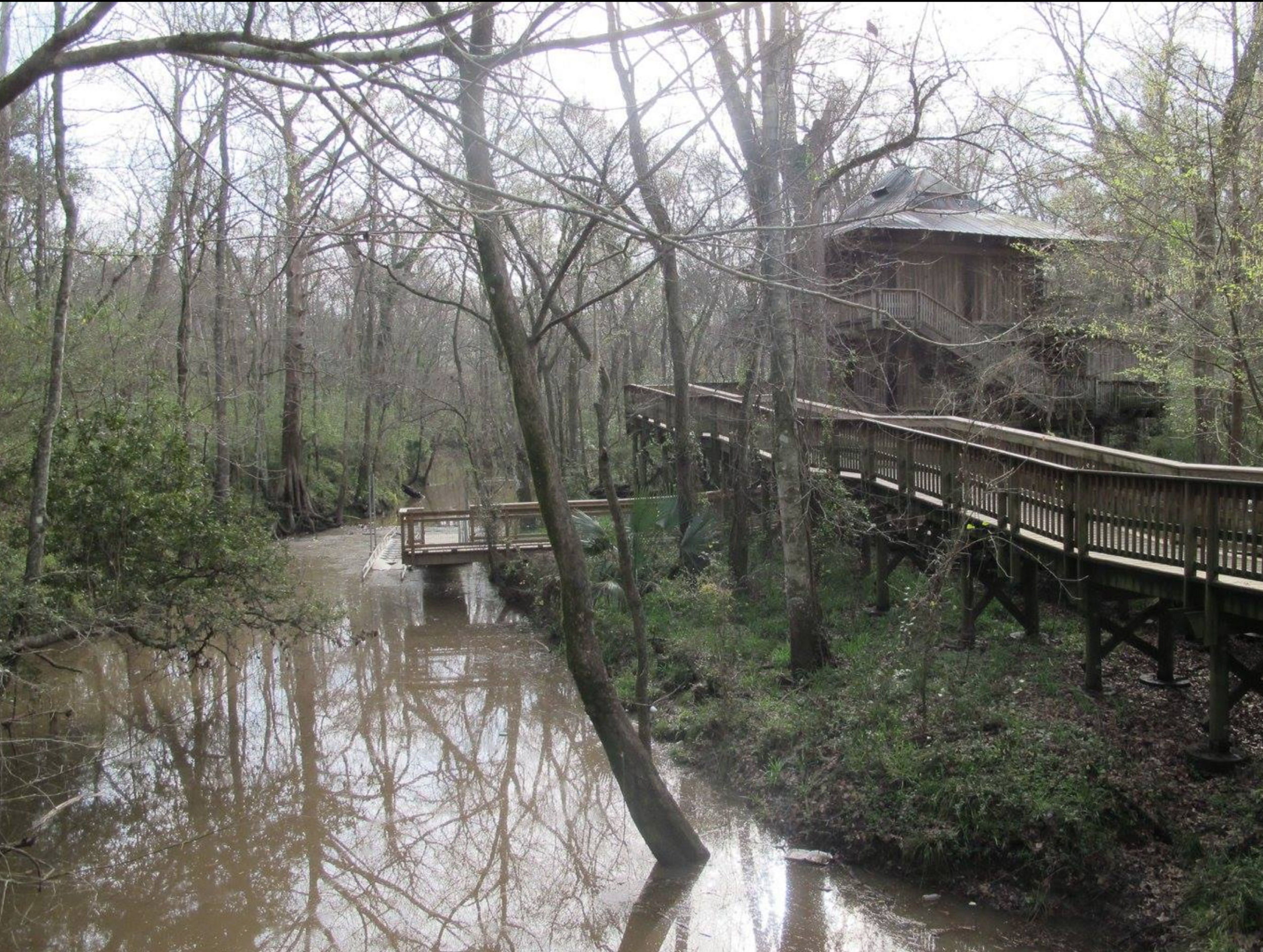 The Nature Station offers a variety of classes for all ages.  It is also the location of a paddle boat launch.  Get dropped off at the nature station, enjoy a hike then paddle down to Vermilionville for lunch at Cafe Maman.