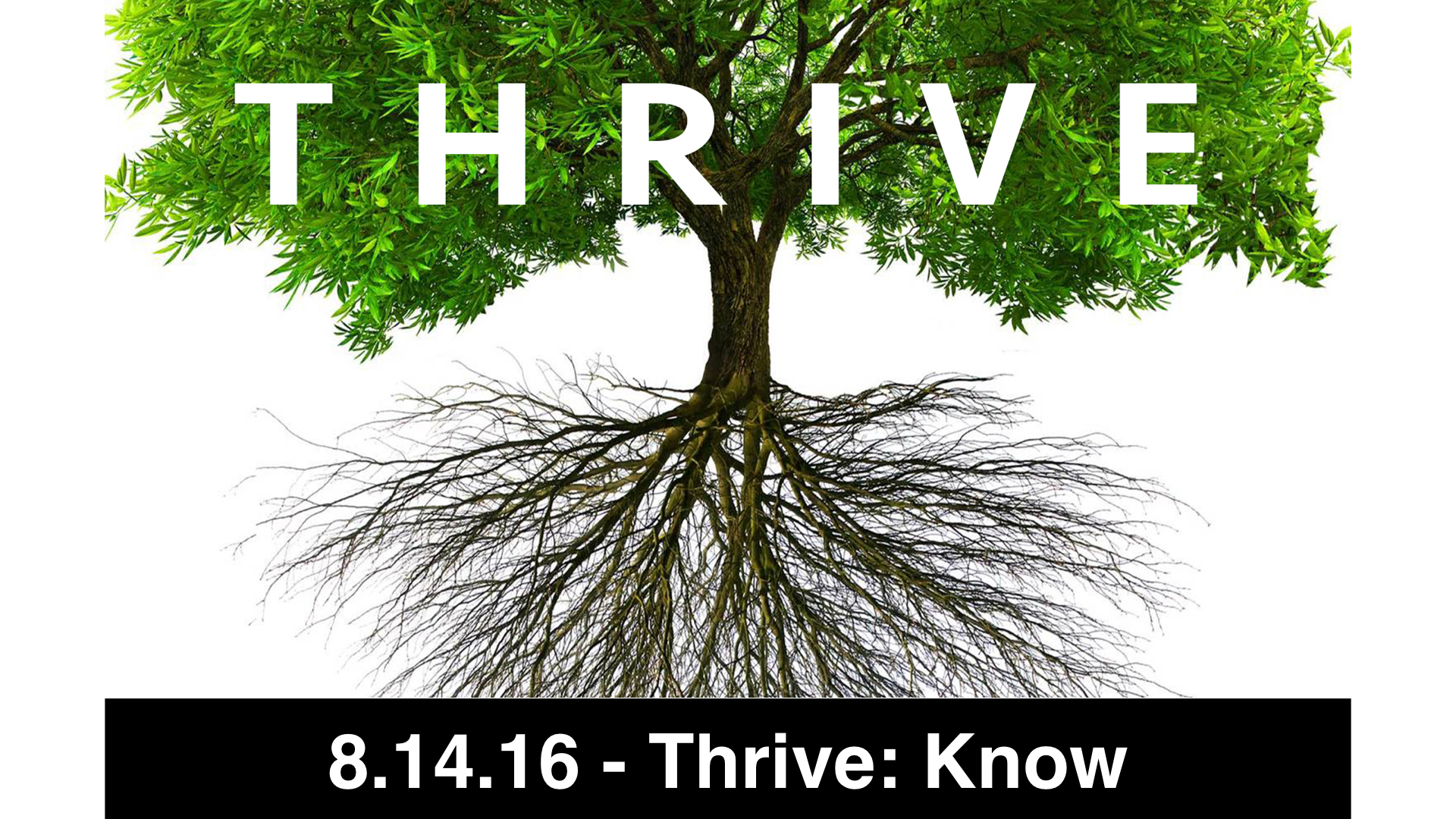 08.14.2016 - Thrive: Know