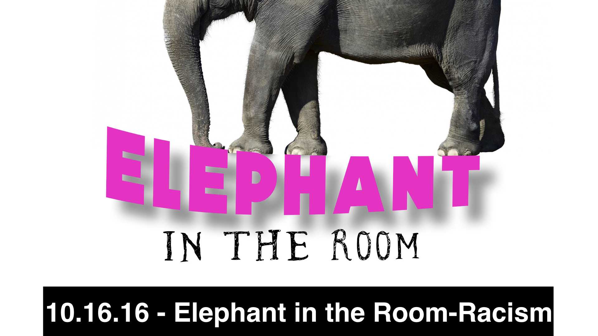 10.16.16-Elephant in the Room - Racism