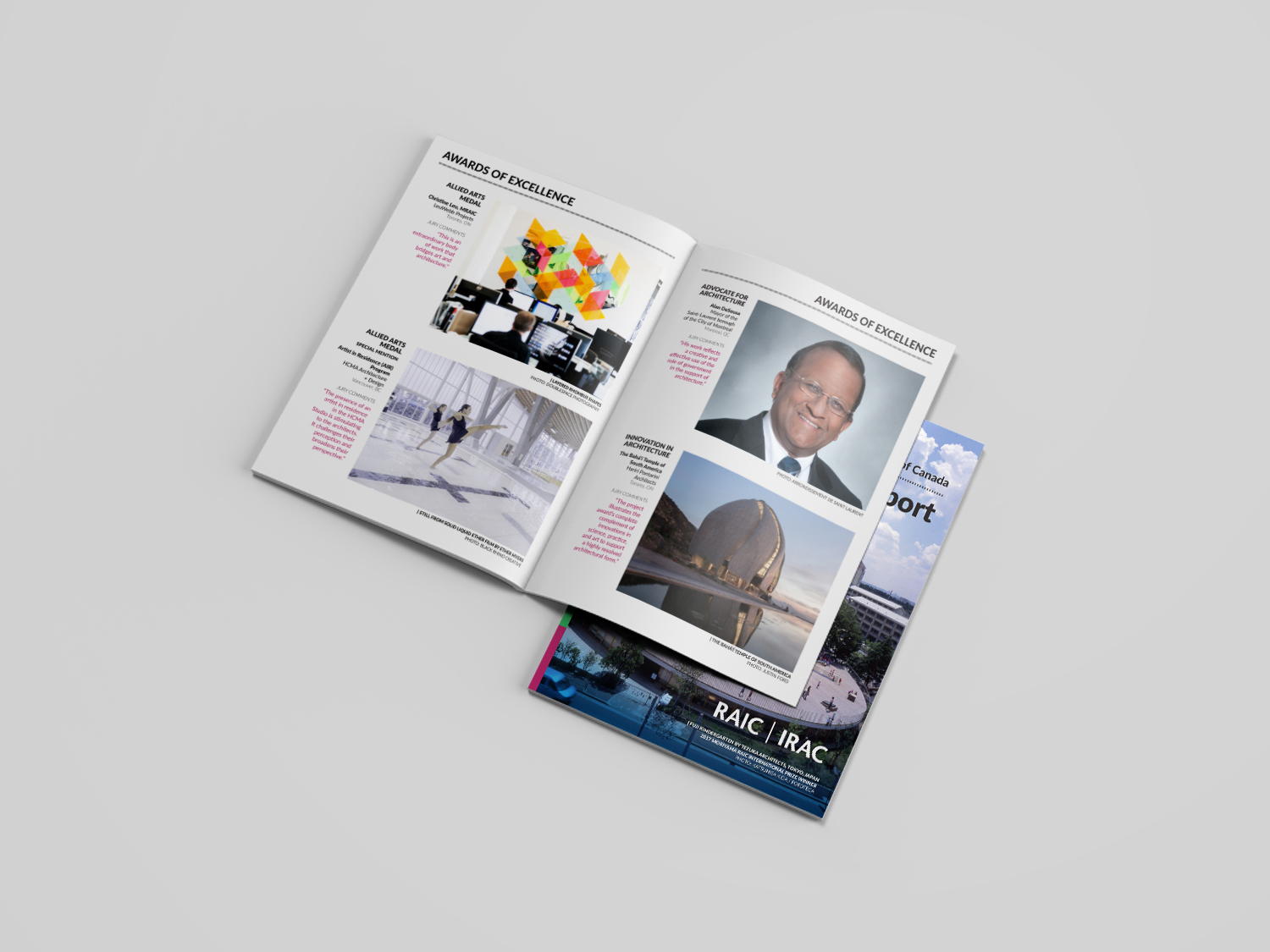 RAIC-Annual-Report-Cover-and-Spread.jpg