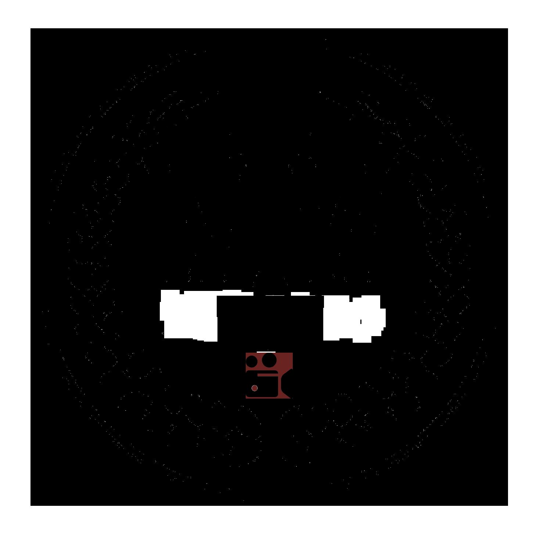 wtw TV logo in black copy.png