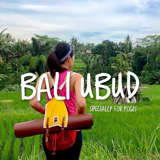 🇮🇩 Bali, Ubud (Specially for yogis)  1⃣ 🧘🏻‍♀️ Be a one-day yogi at #YogaBarn -Highly recommended  2⃣ 🥙 Eat at #KAFEBali for healthy yummies 3⃣ 🌾 Stay @kamandalu enjoy the rice field 4⃣ 🎪 Attend once a year yoga festival @balispiritfest  5⃣ 🎽 Buy designed yoga product at #TheYogaHouse 6⃣ 🍦Try organic coconut ice cream  7⃣ 🌅 Enjoy sunset and chill at @ayanaresort #RockBar  8⃣ 🏊🏻‍♀️ Try a pool-dining breakfast  9⃣ 🐒 Meeting new friend at #SacredMonkeyForest 🔟 🚨 Don't request Uber or Grab in front of local taxi driver...(seriously)  #designerwhotravel #meettheworld #creativeitineray #bali #ubud #yoga #yogis #connectsoul #innerpeace #calm #healthy #nature #organic #foodie #monkey
