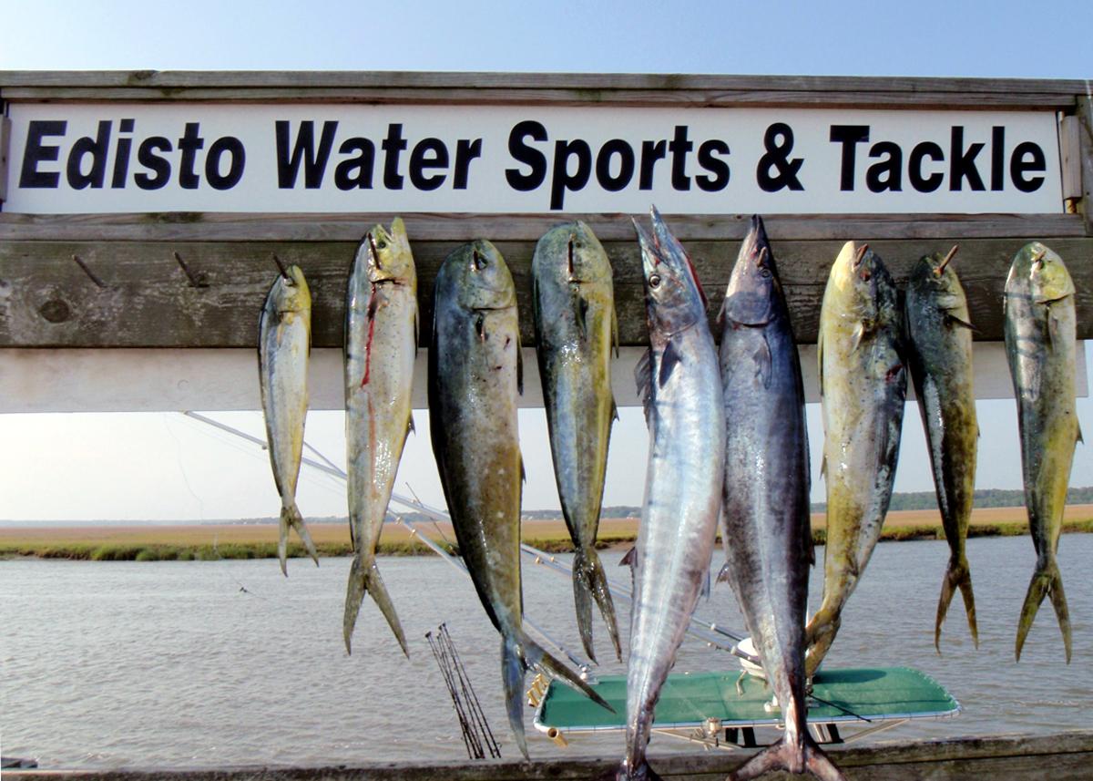 Edisto Water Sports & Tackle