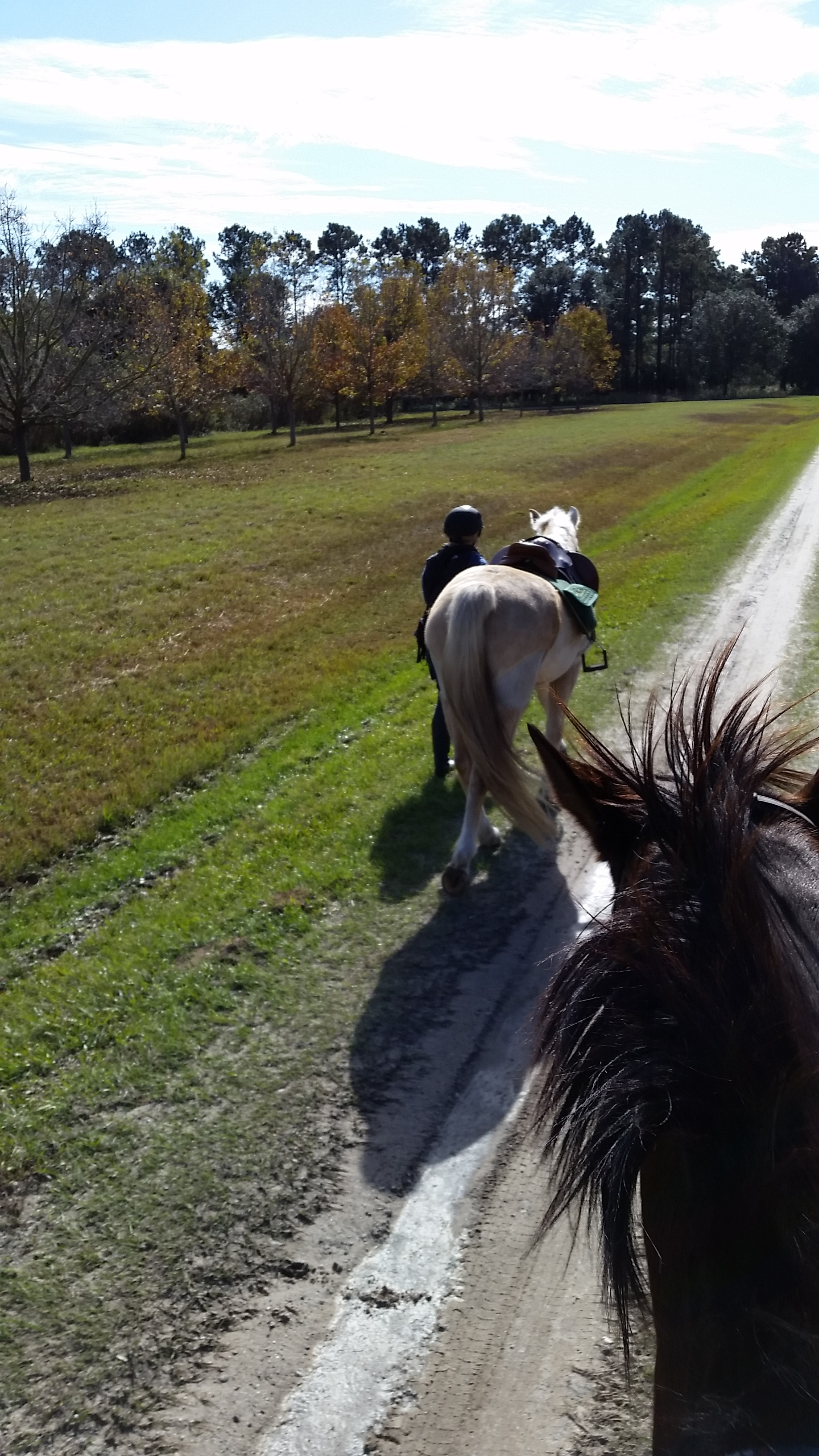 Leaving Cassina Point for day 2 of our traveling by horse adventure.
