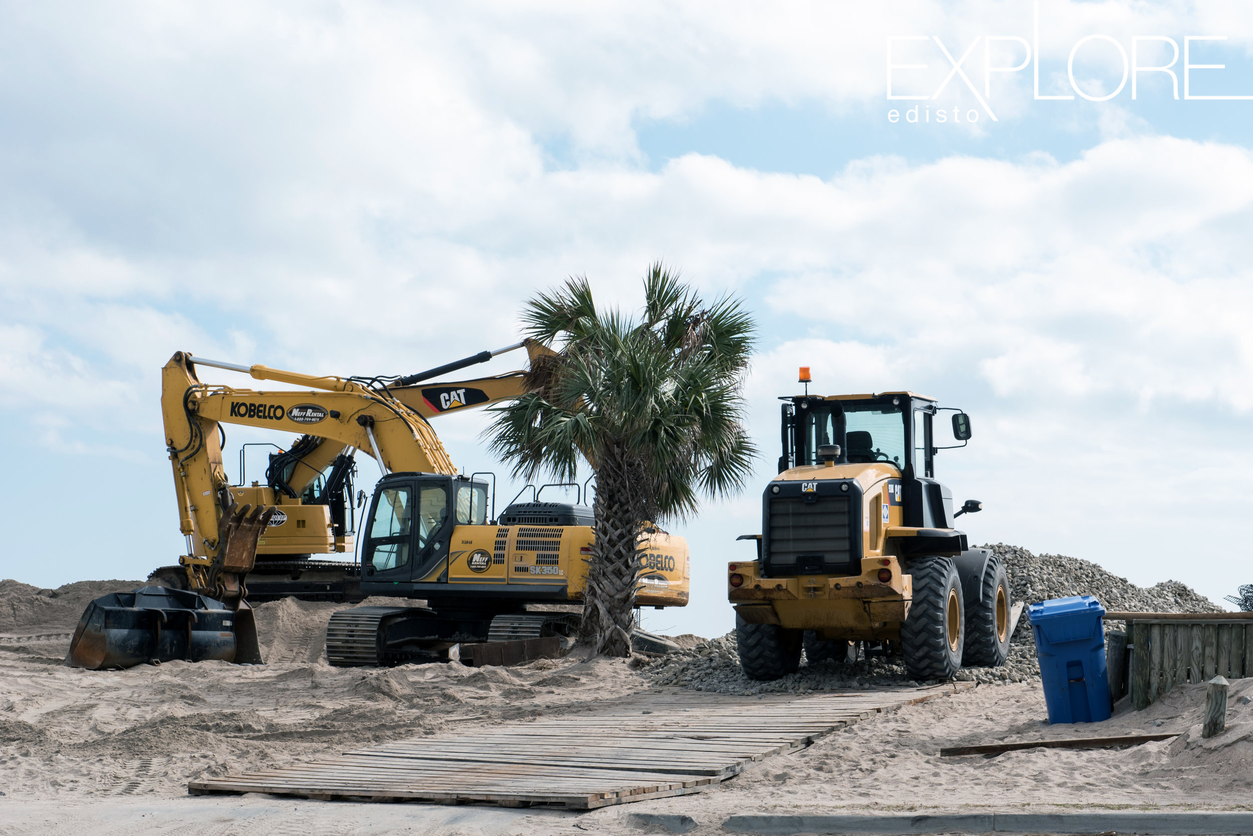 Tractors on beach next to a palmetto tree.