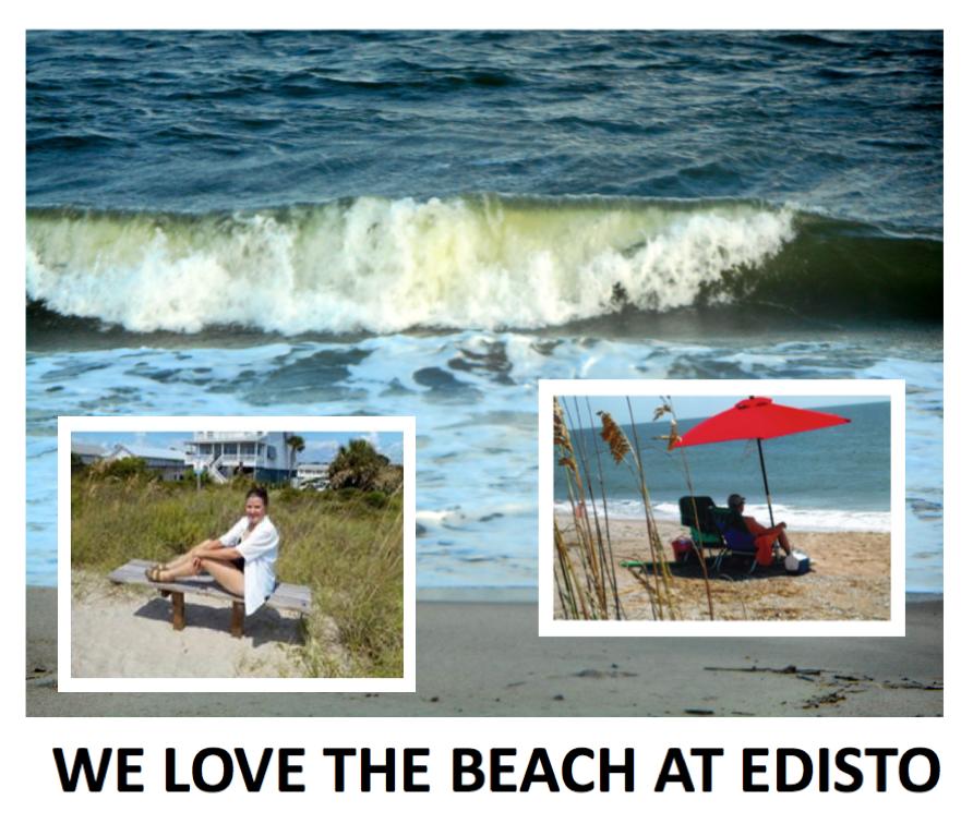 #4 We love Edisto.png