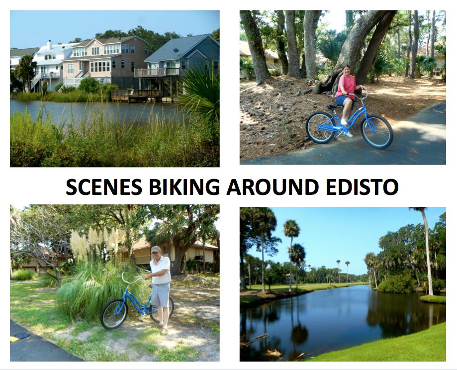 #6 Biking at Edisto.png