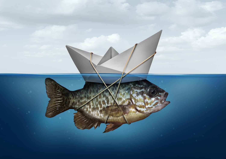 fishpost.jpeg