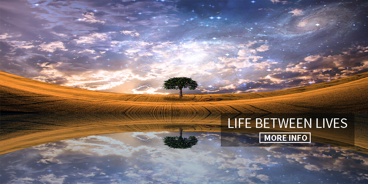 life between lives2.jpg