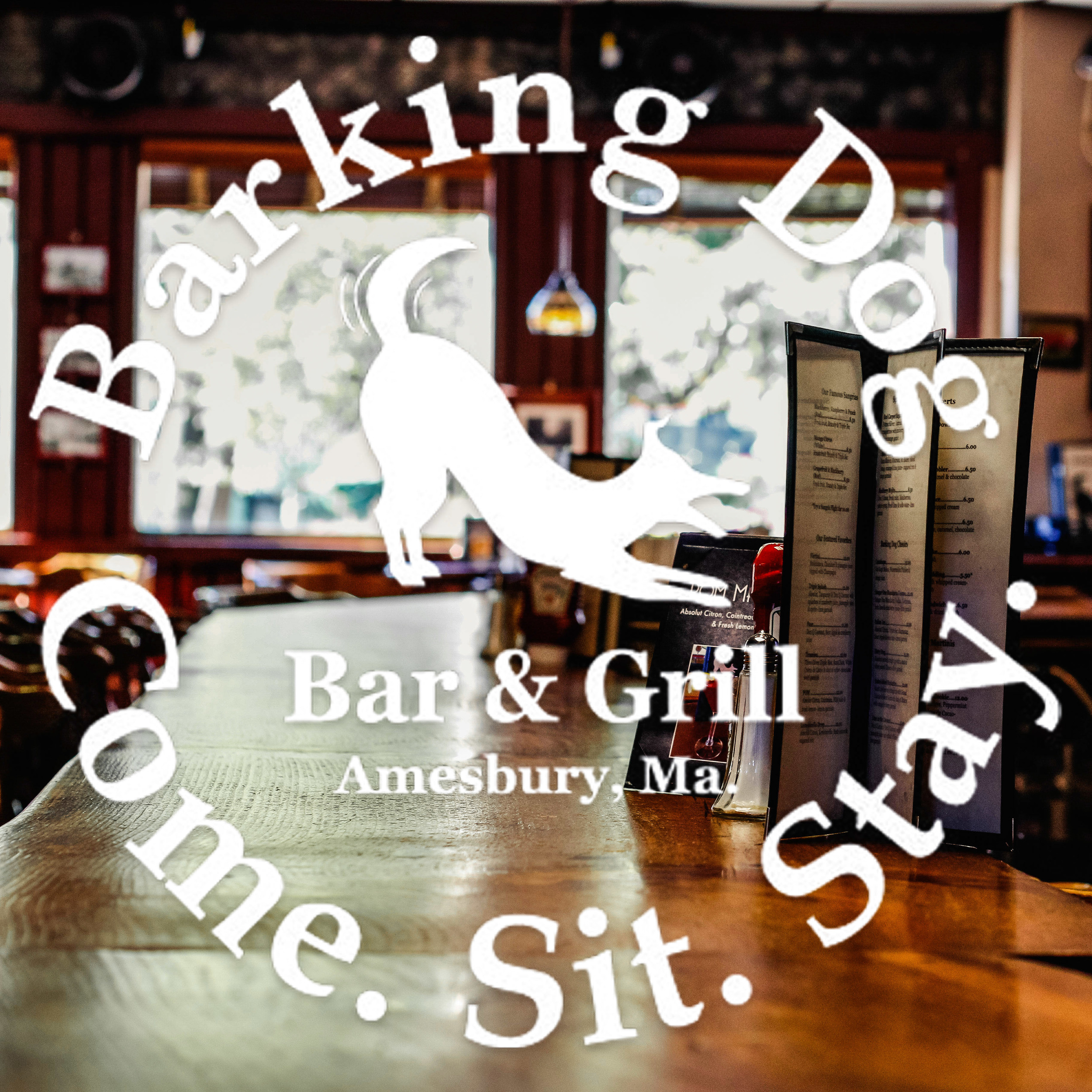 CHECK OUT A 3D TOUR AND PICTURES OF THE BARKING DOG