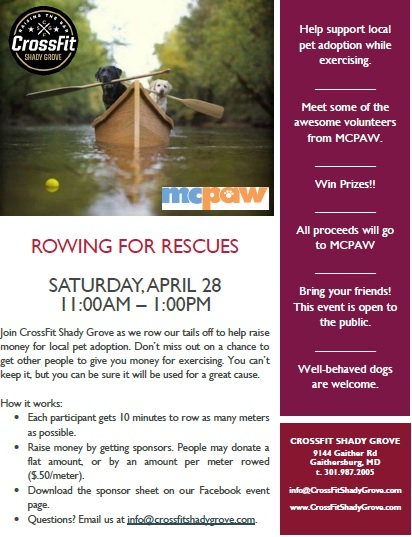 Rowing for Rescues 2018.jpg